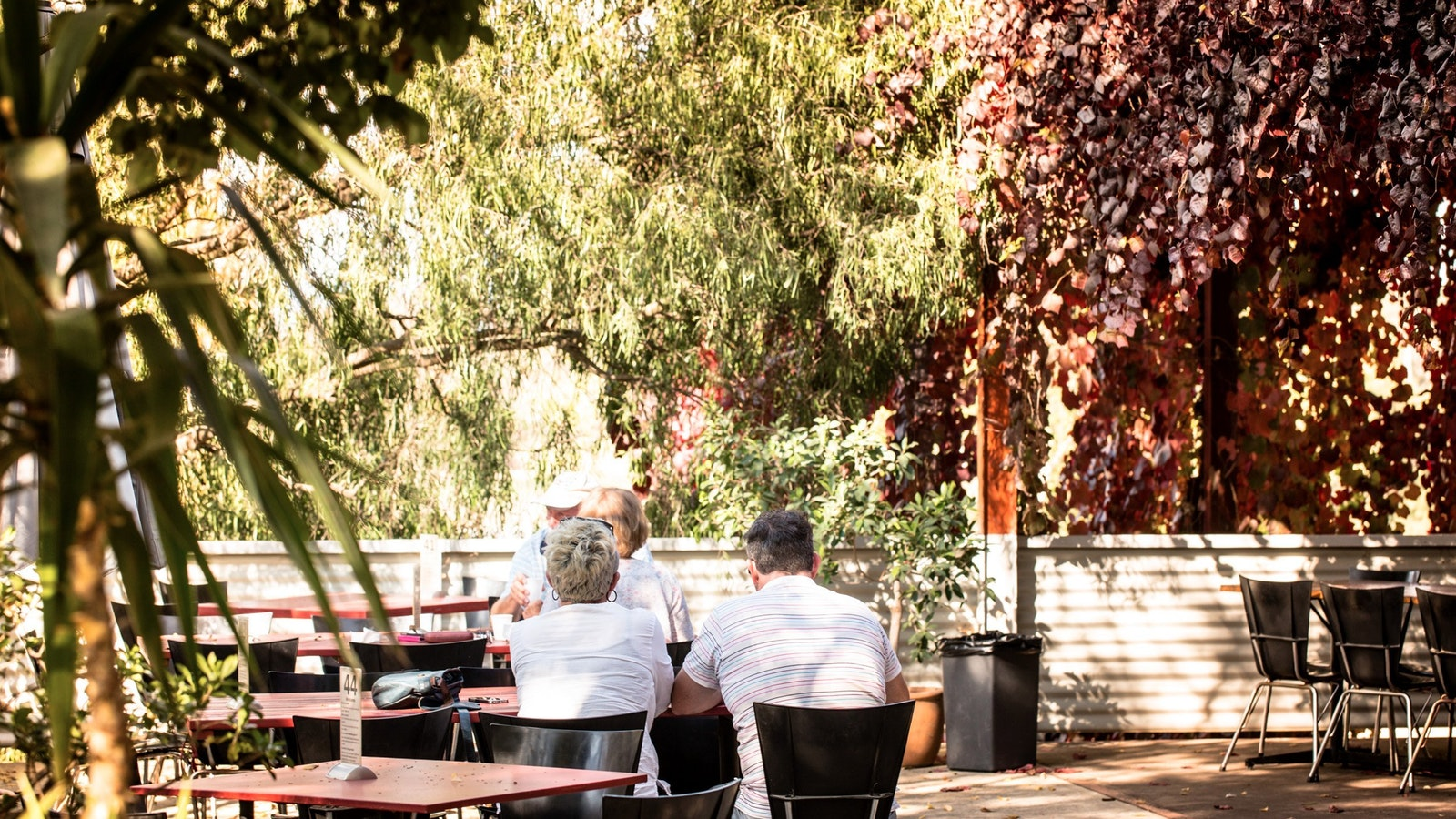 Dine among the vines on the Milawa Cheese Factory deck