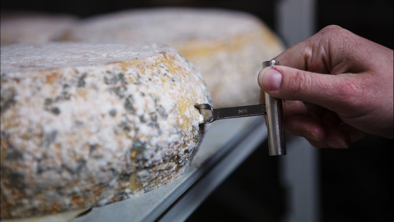 Milawa Blue Cheese