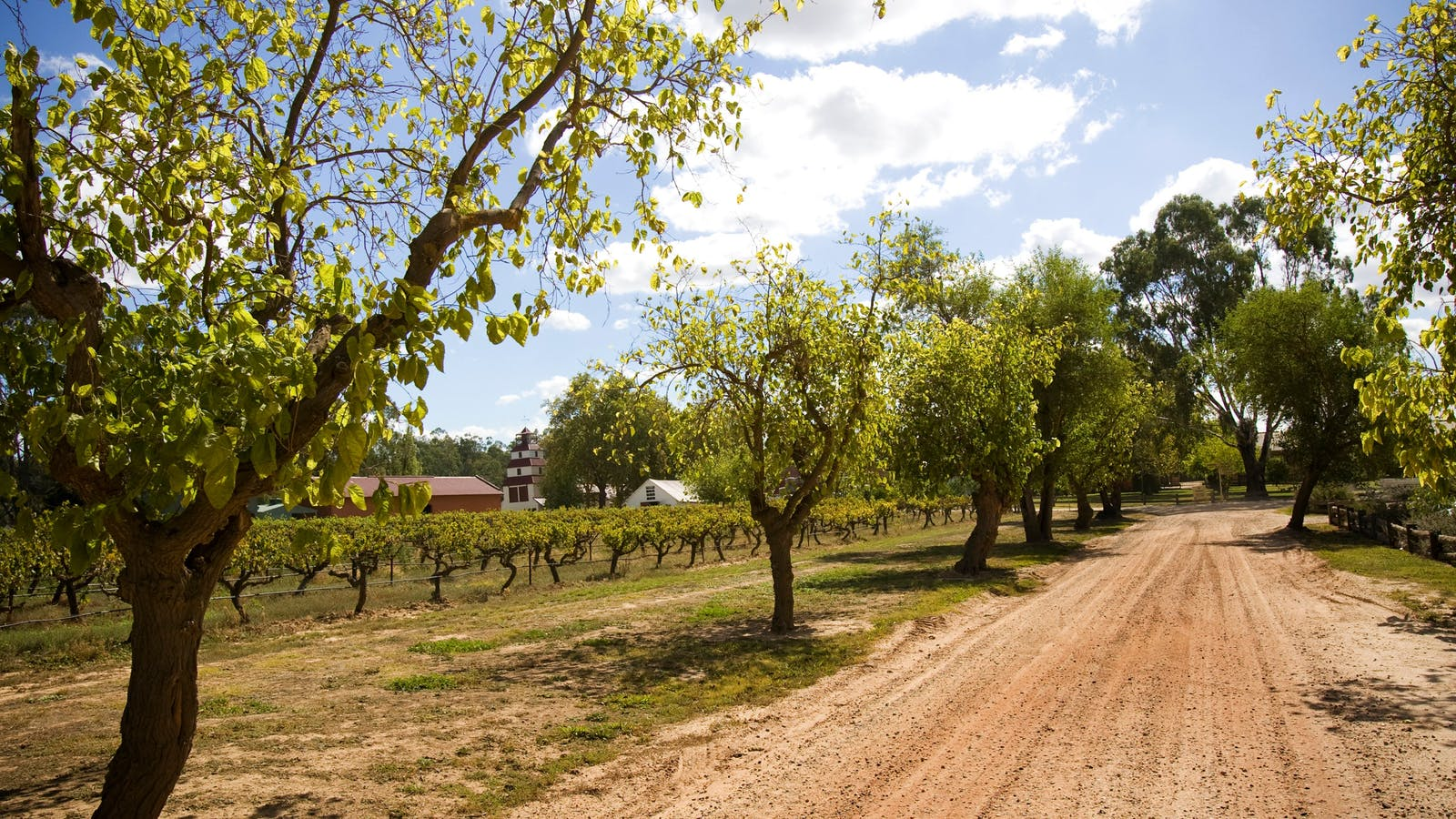 Road leading to the original Winery &  Cellar Yard with 1875 Tower visible