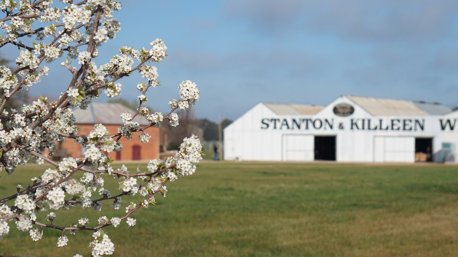 Stanton and Killeen in spring