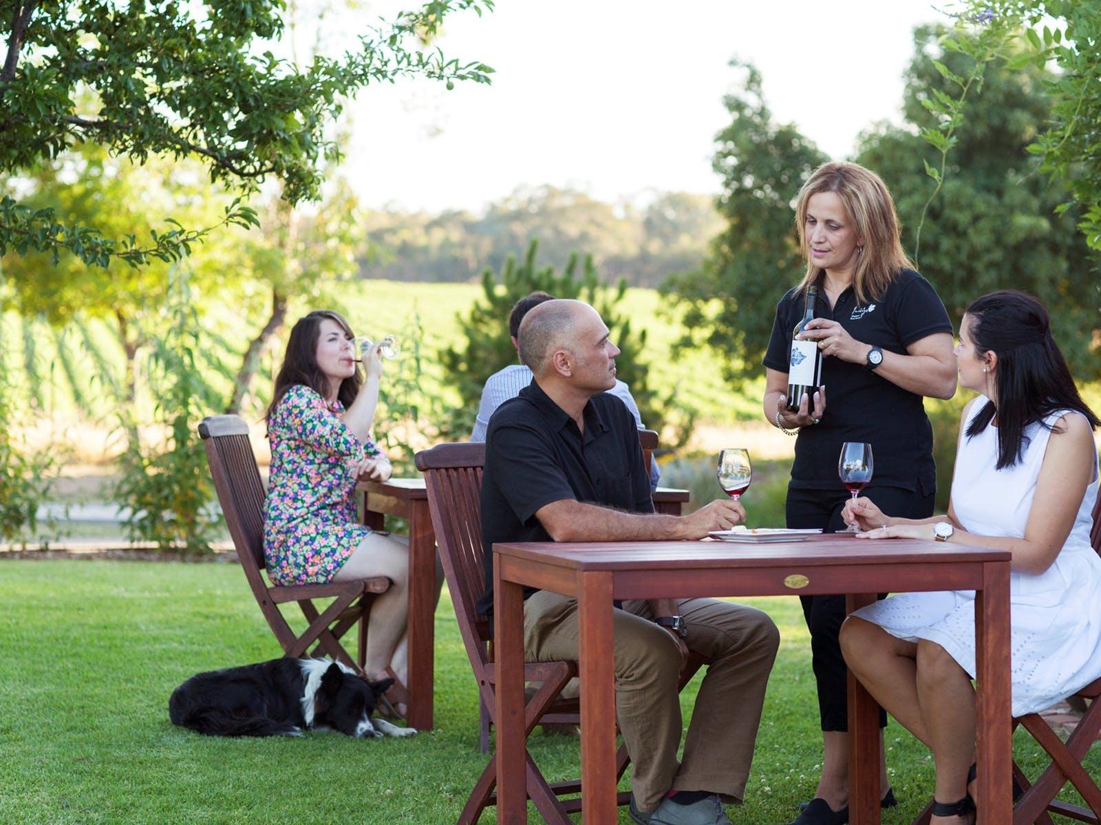wine tasting on lawn