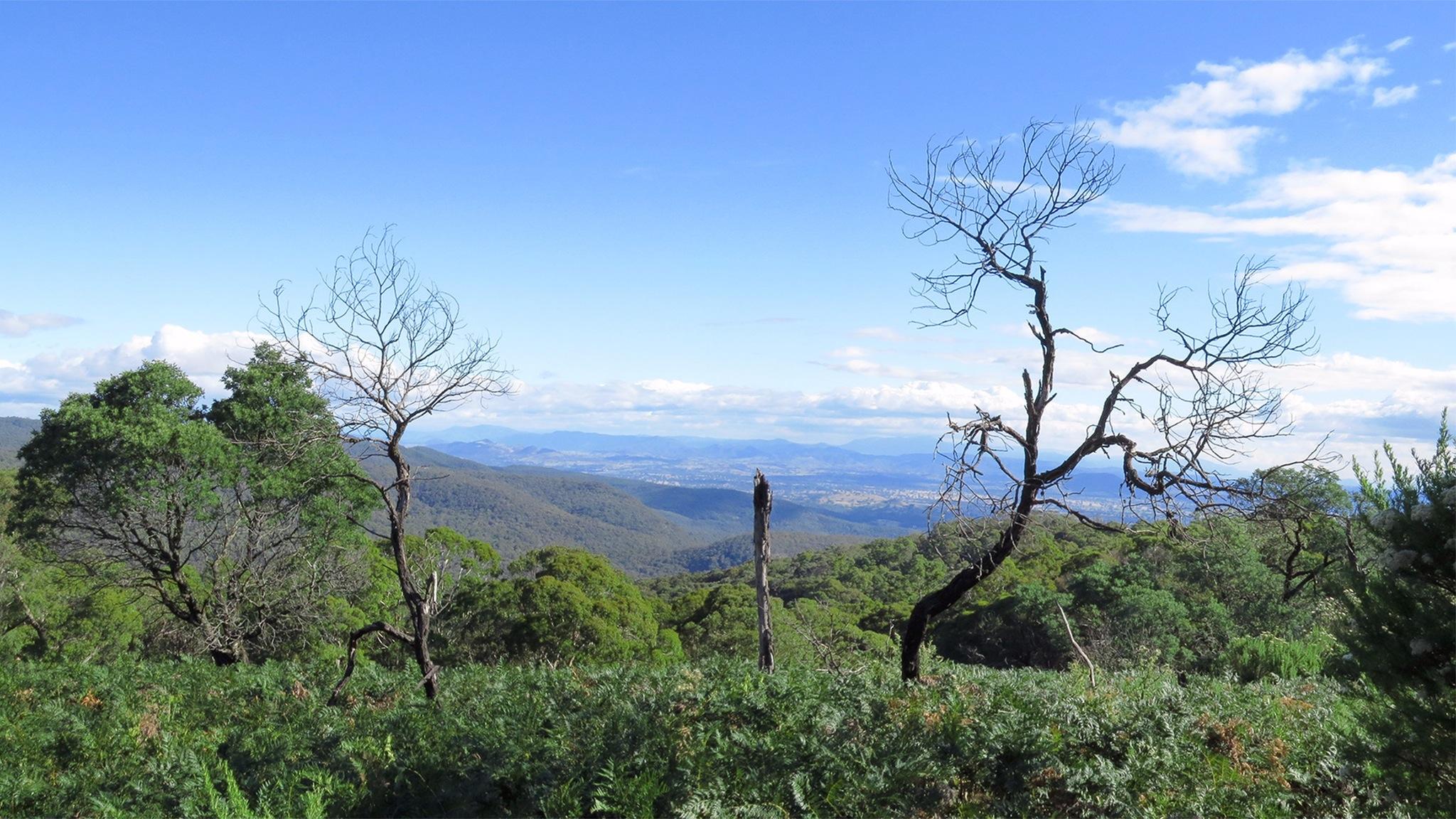 Mount Samaria State Park