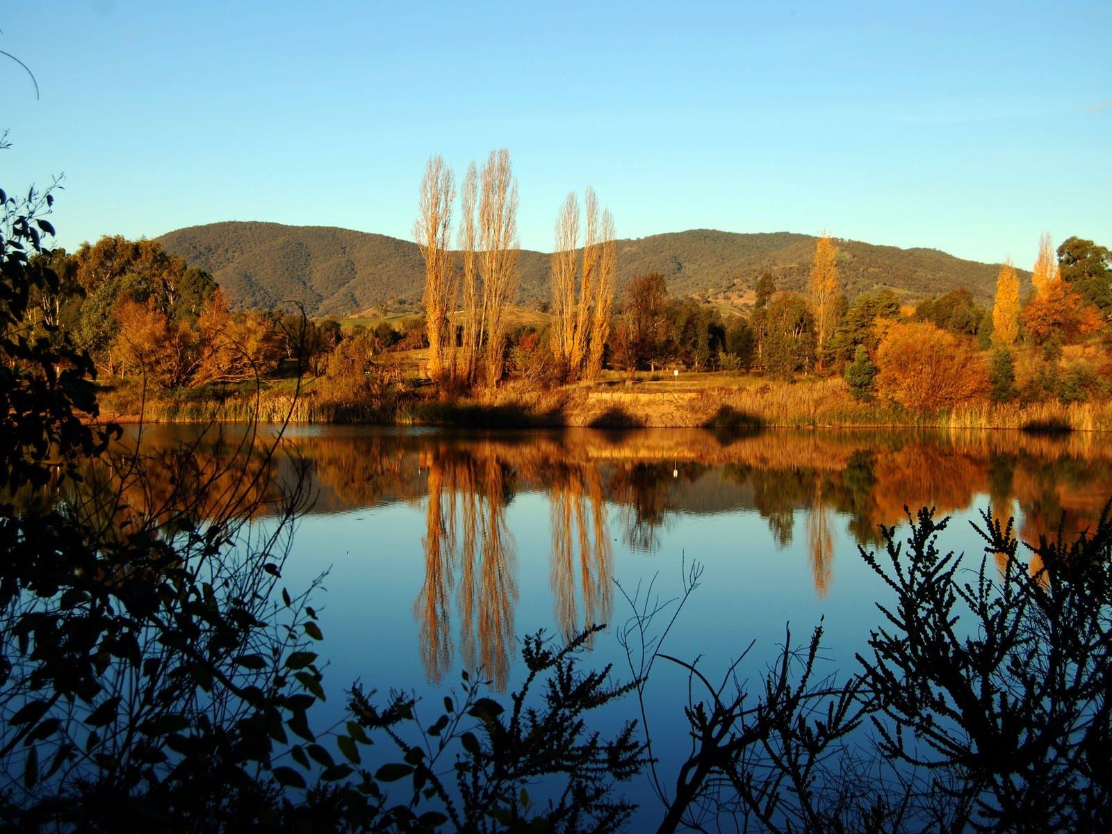 Allan's Flat Reserve