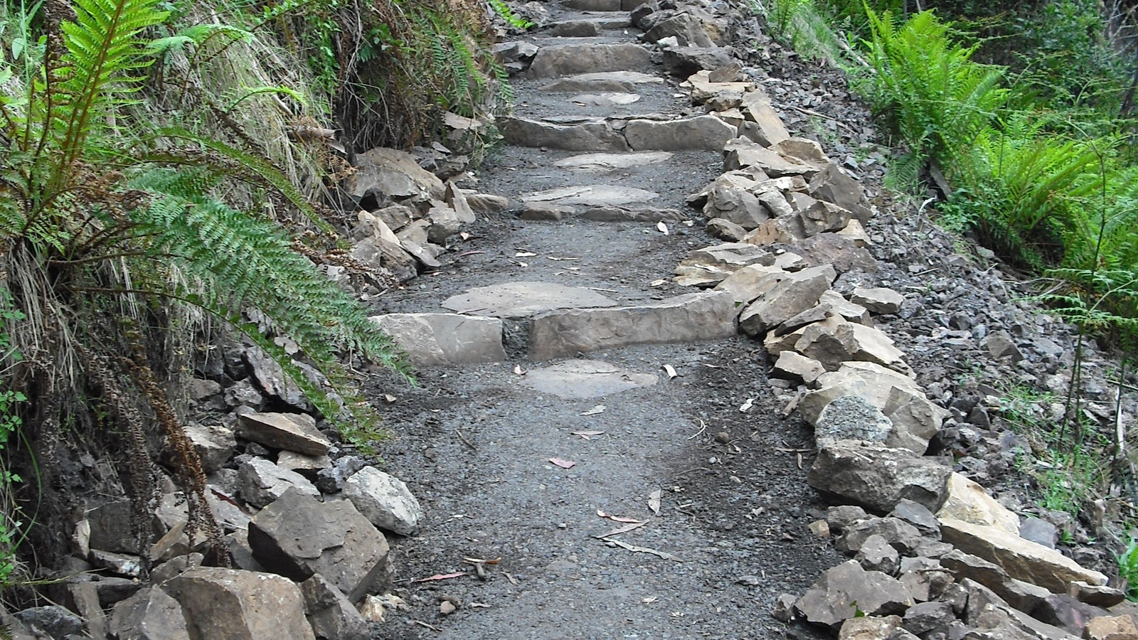 Stepped track to Bindaree Falls