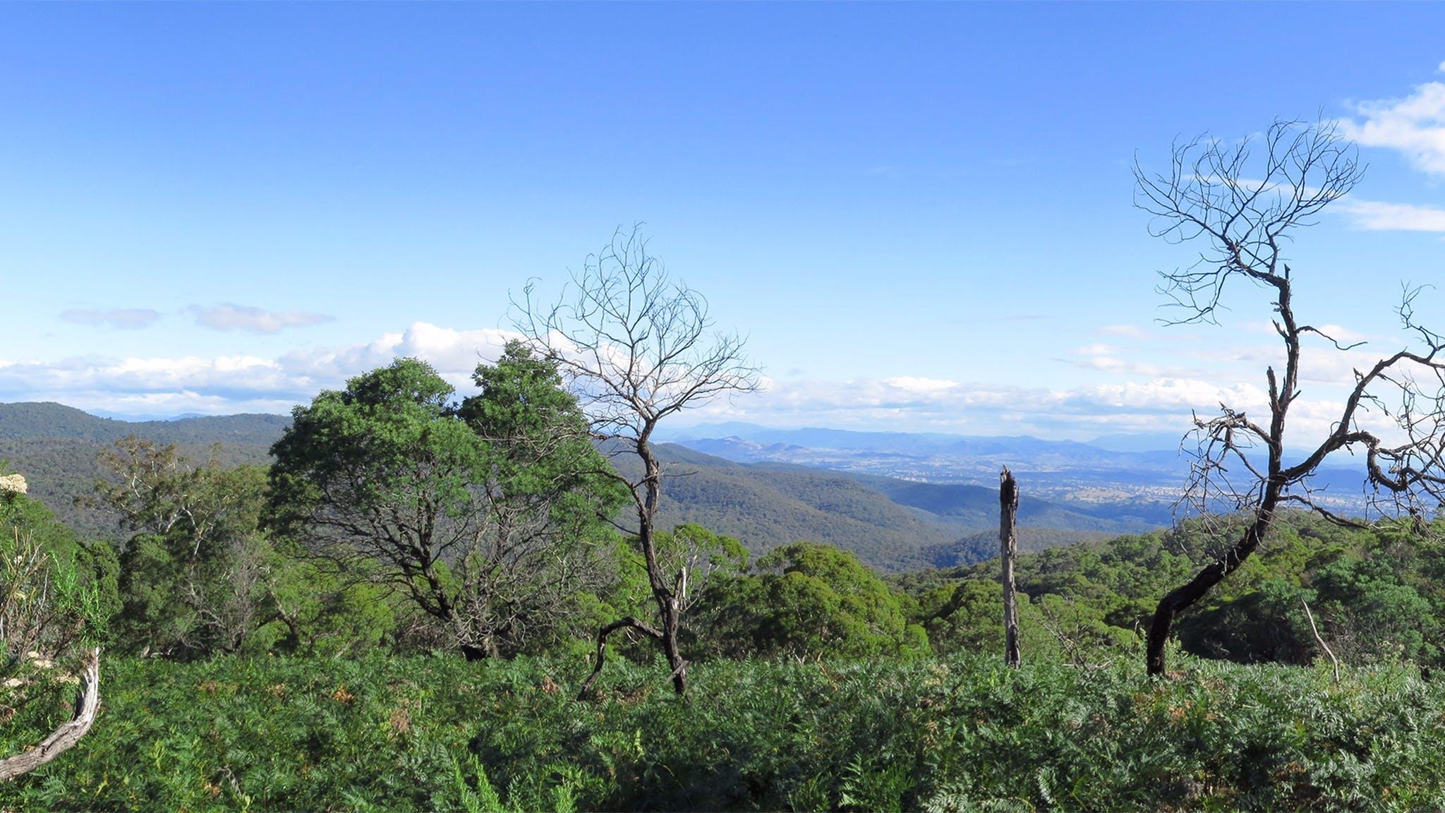 Mt Samaria