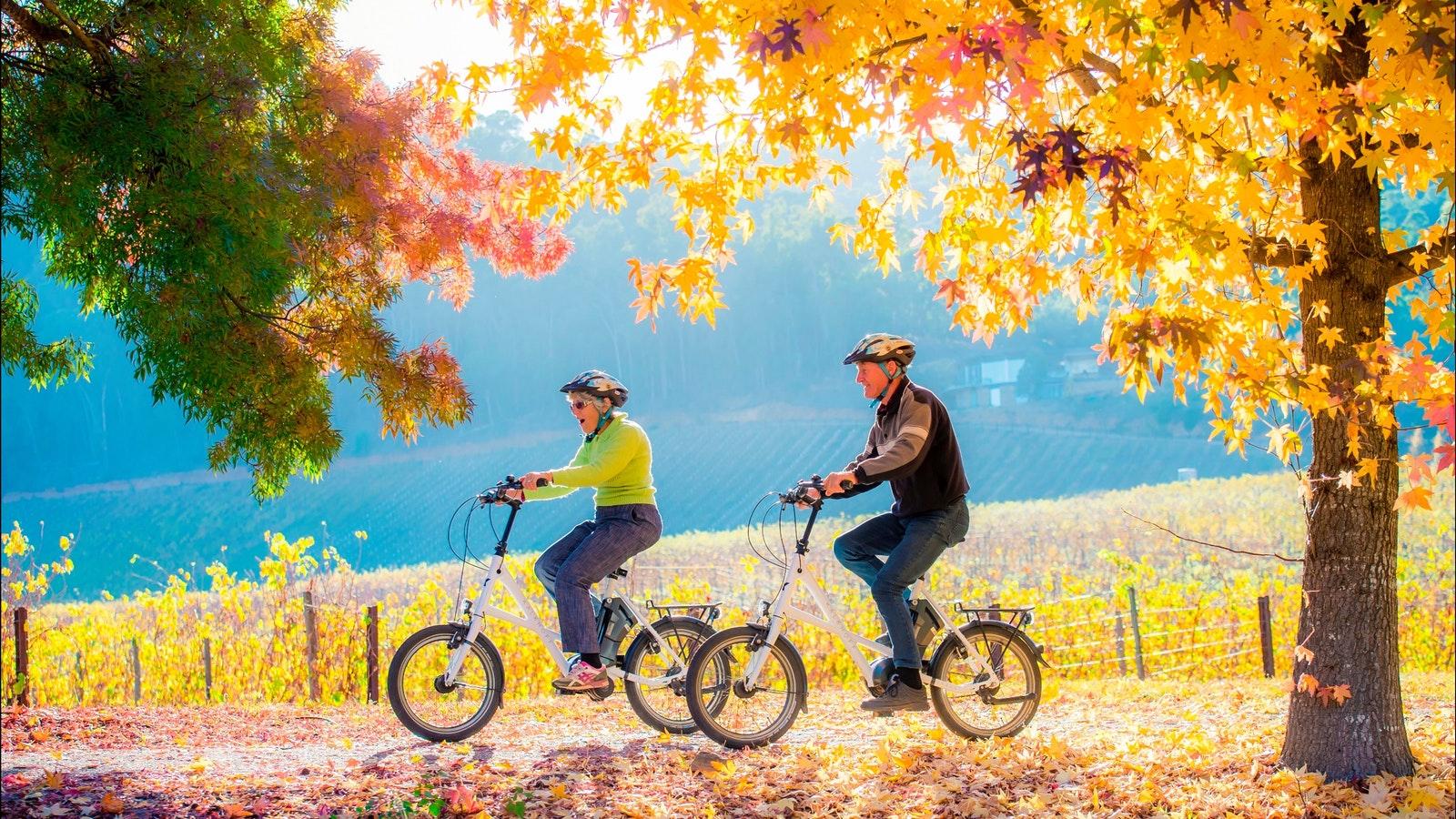 Bright Electric Bikes - Bright, Victoria