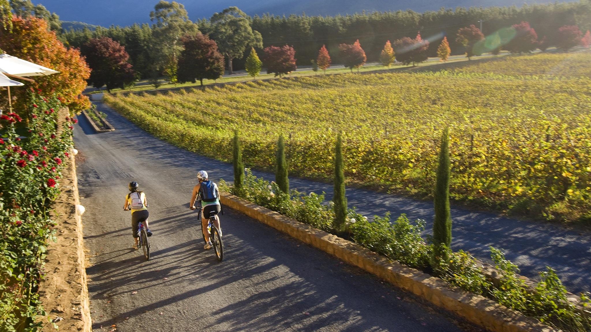 Bright Electric Bikes, Bright, Victoria