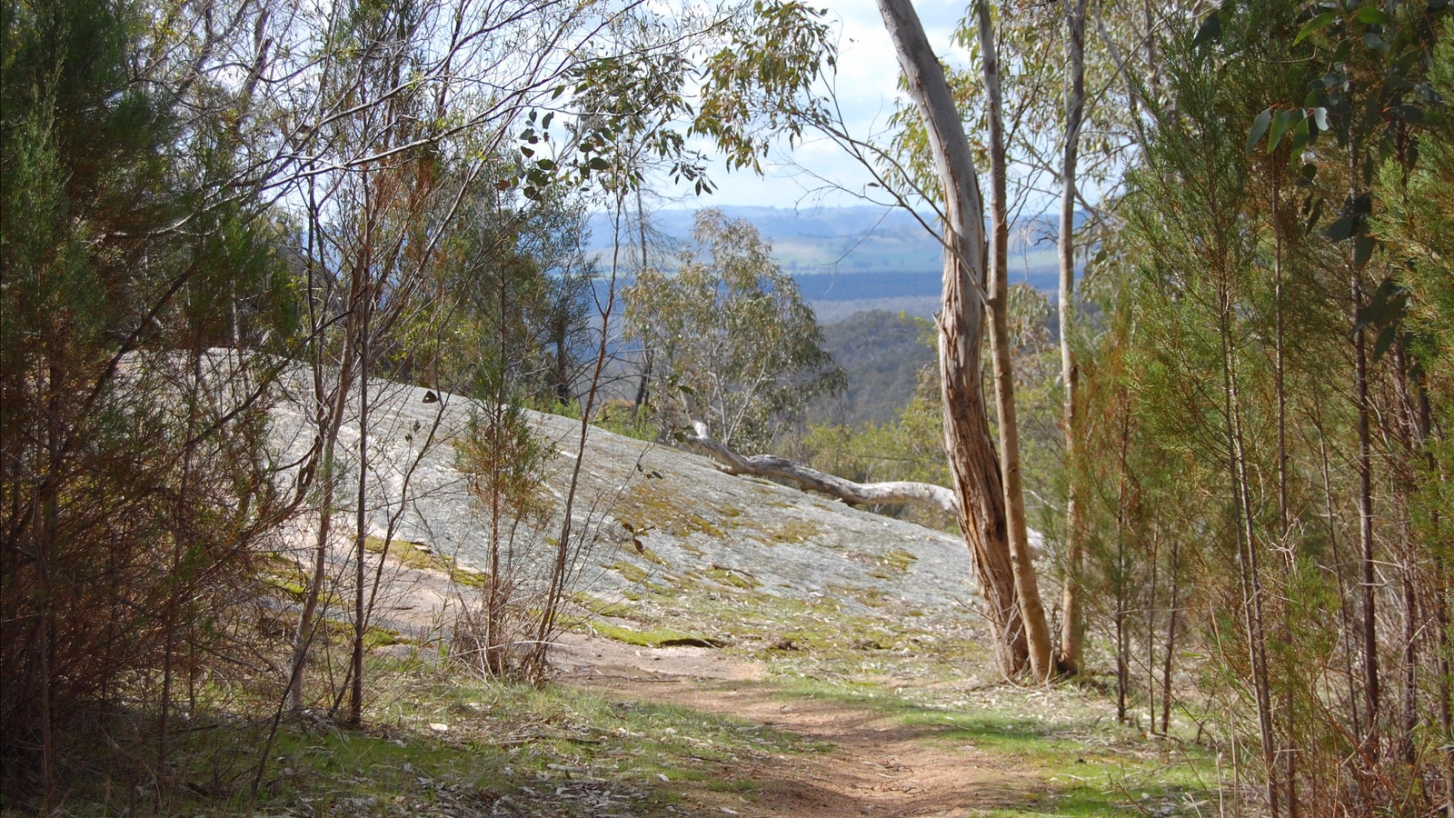 View from path on climb up Mt Pilot