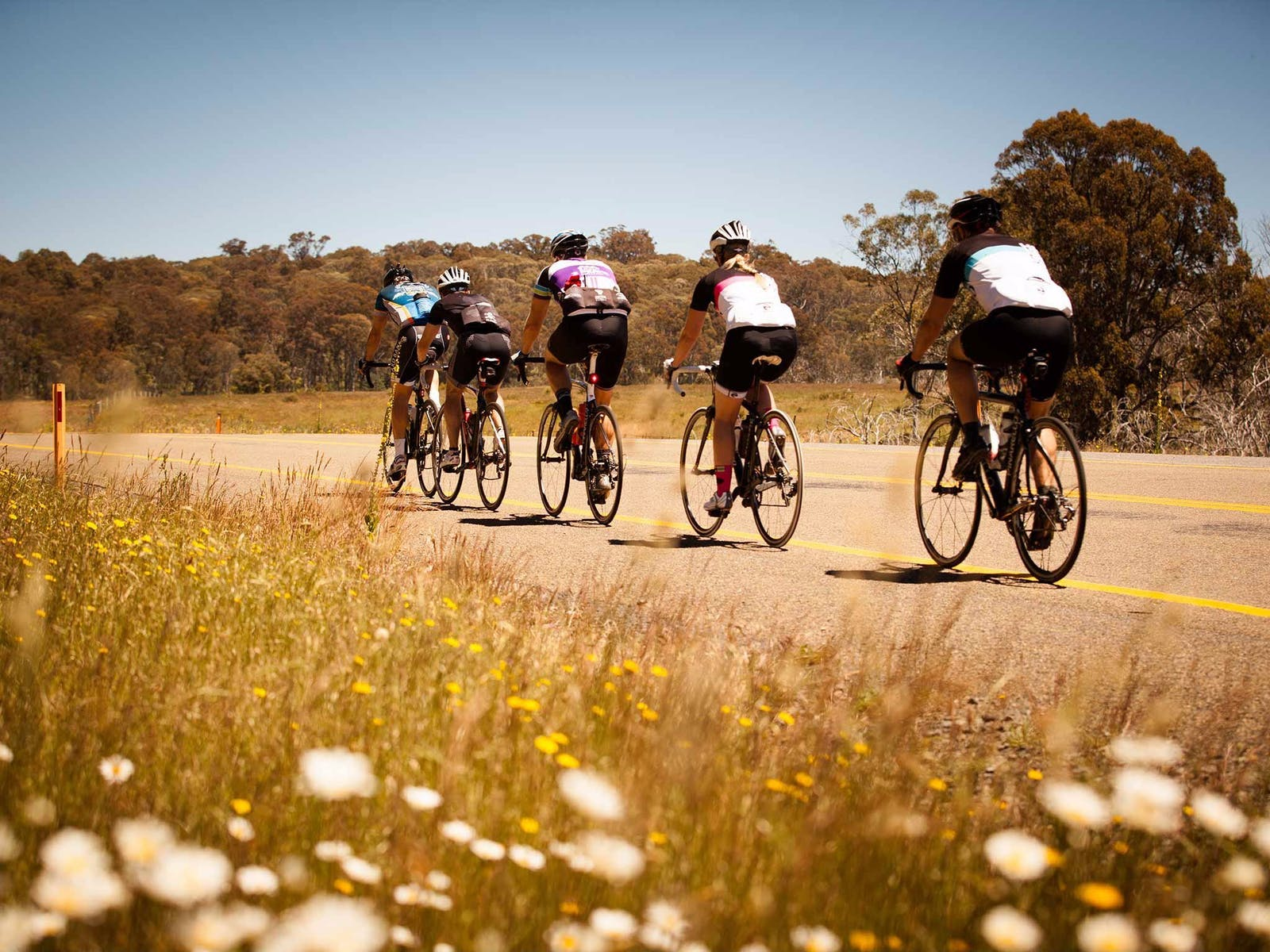 7 Peaks Ride Dinner Plain