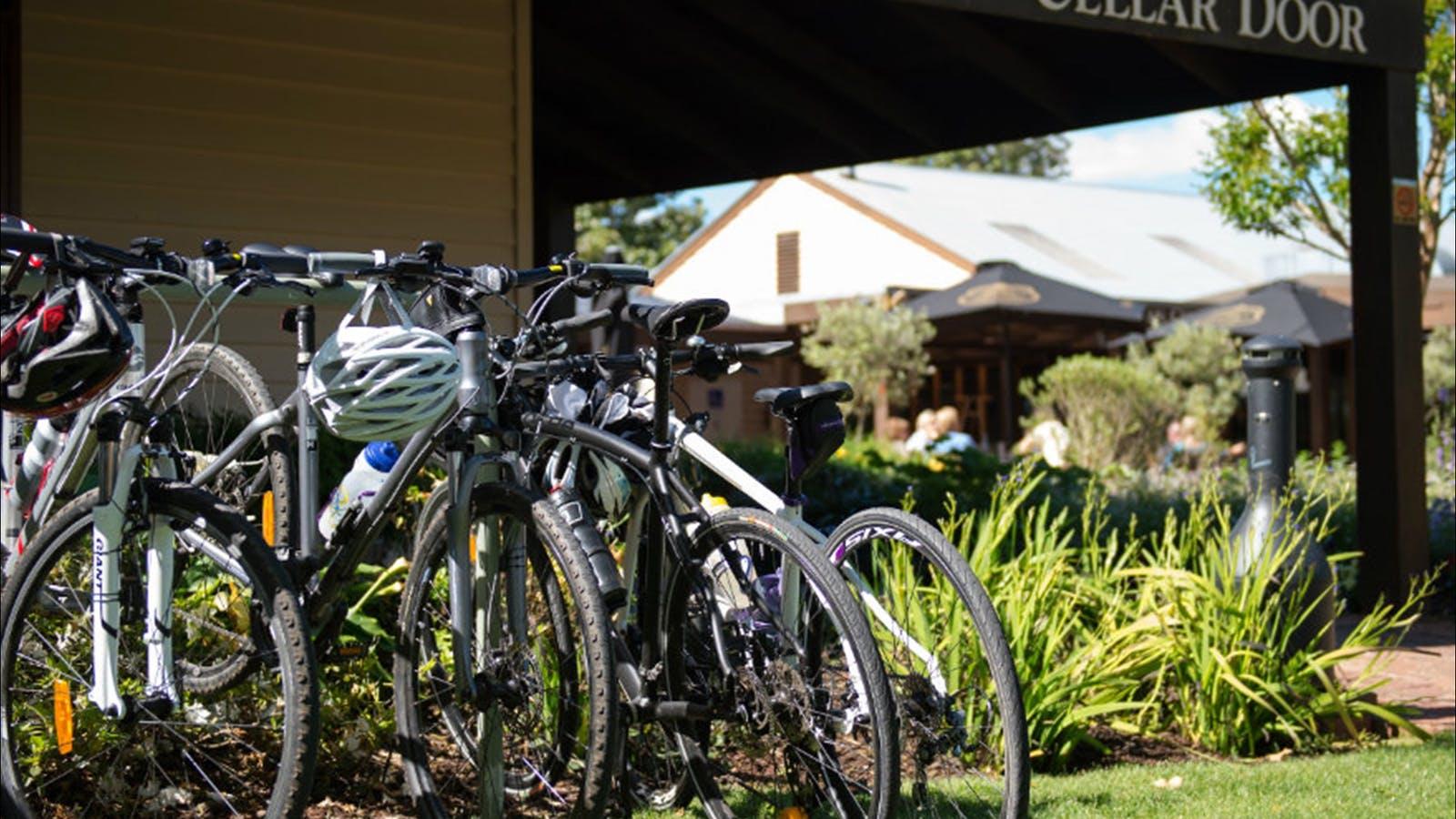 Murray to Mountains Rail Trail Wangaratta to Milawa via Oxley