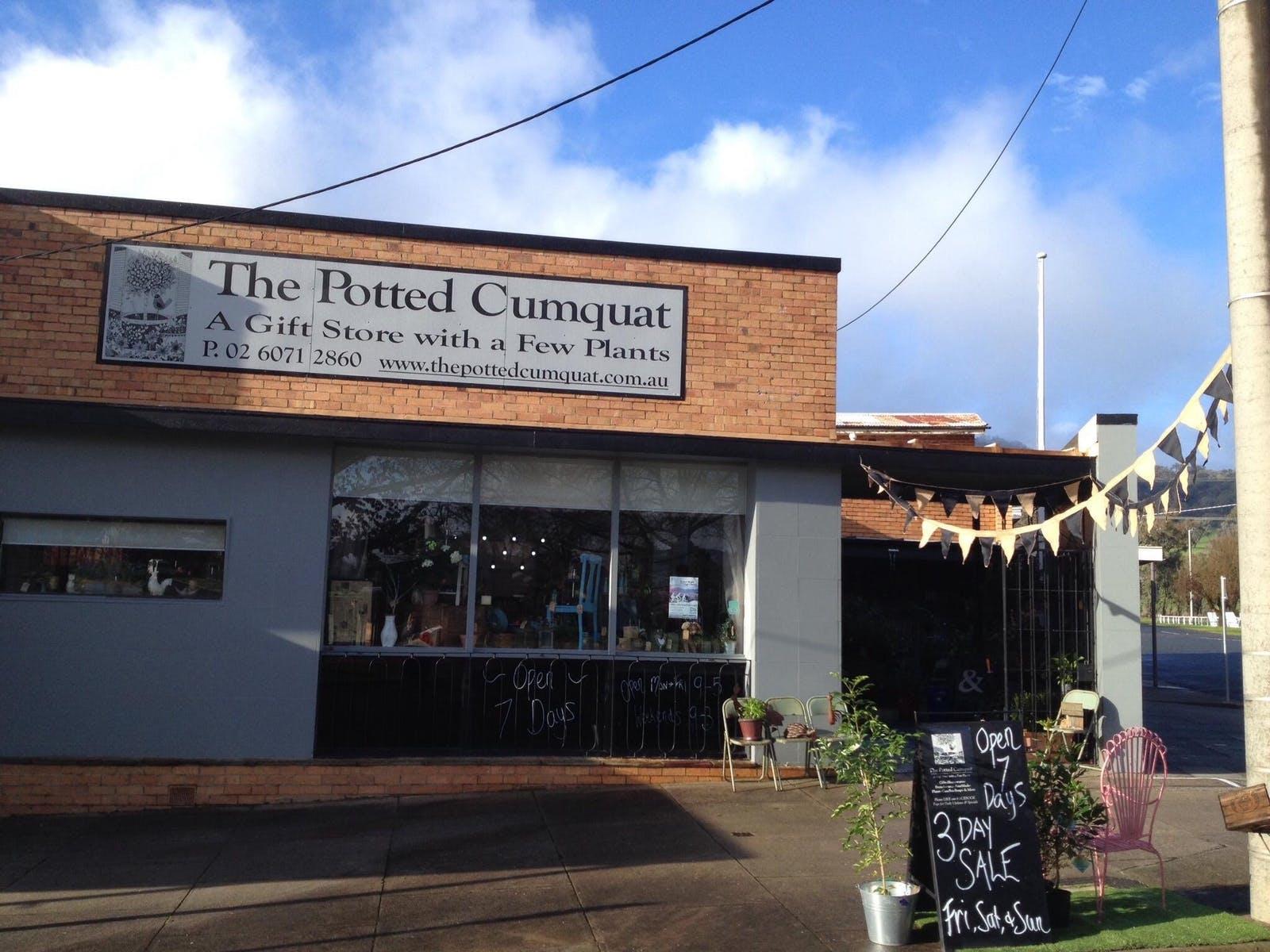 The Potted Cumquat