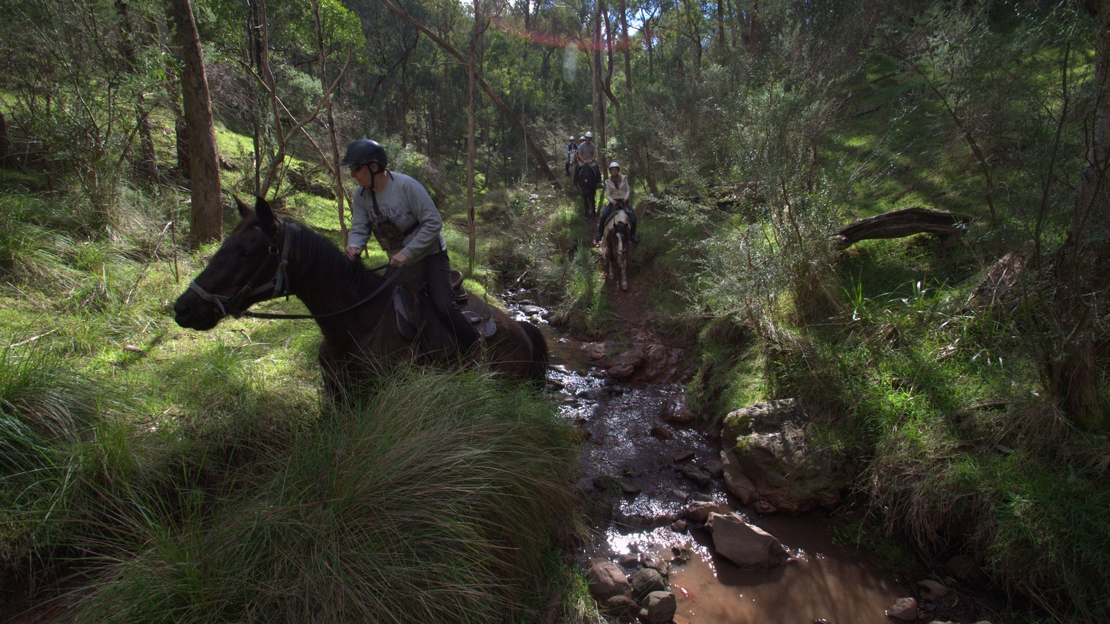 Crossing a creek on the overnight horse ride