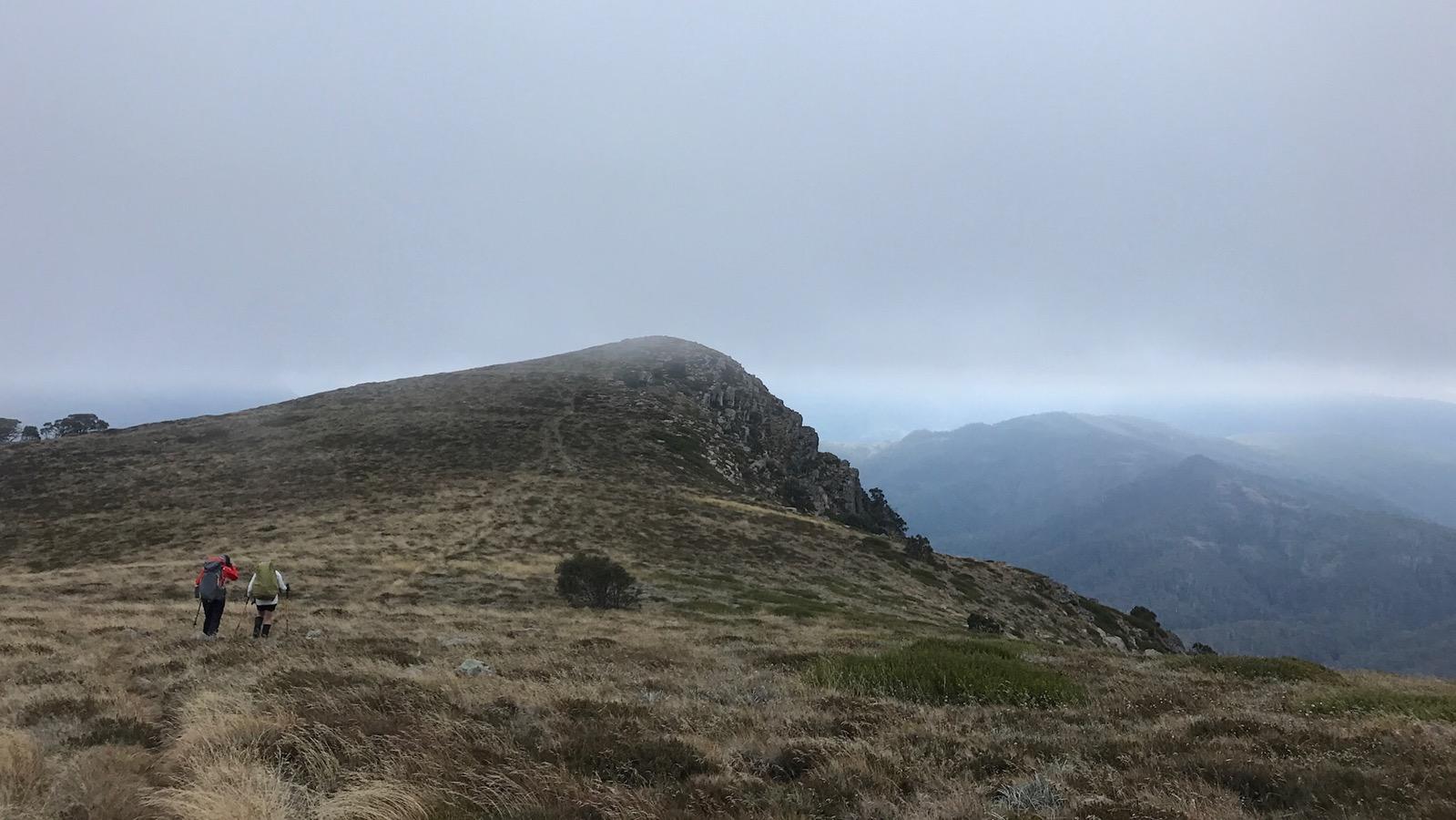 West Peak of Mt Howitt
