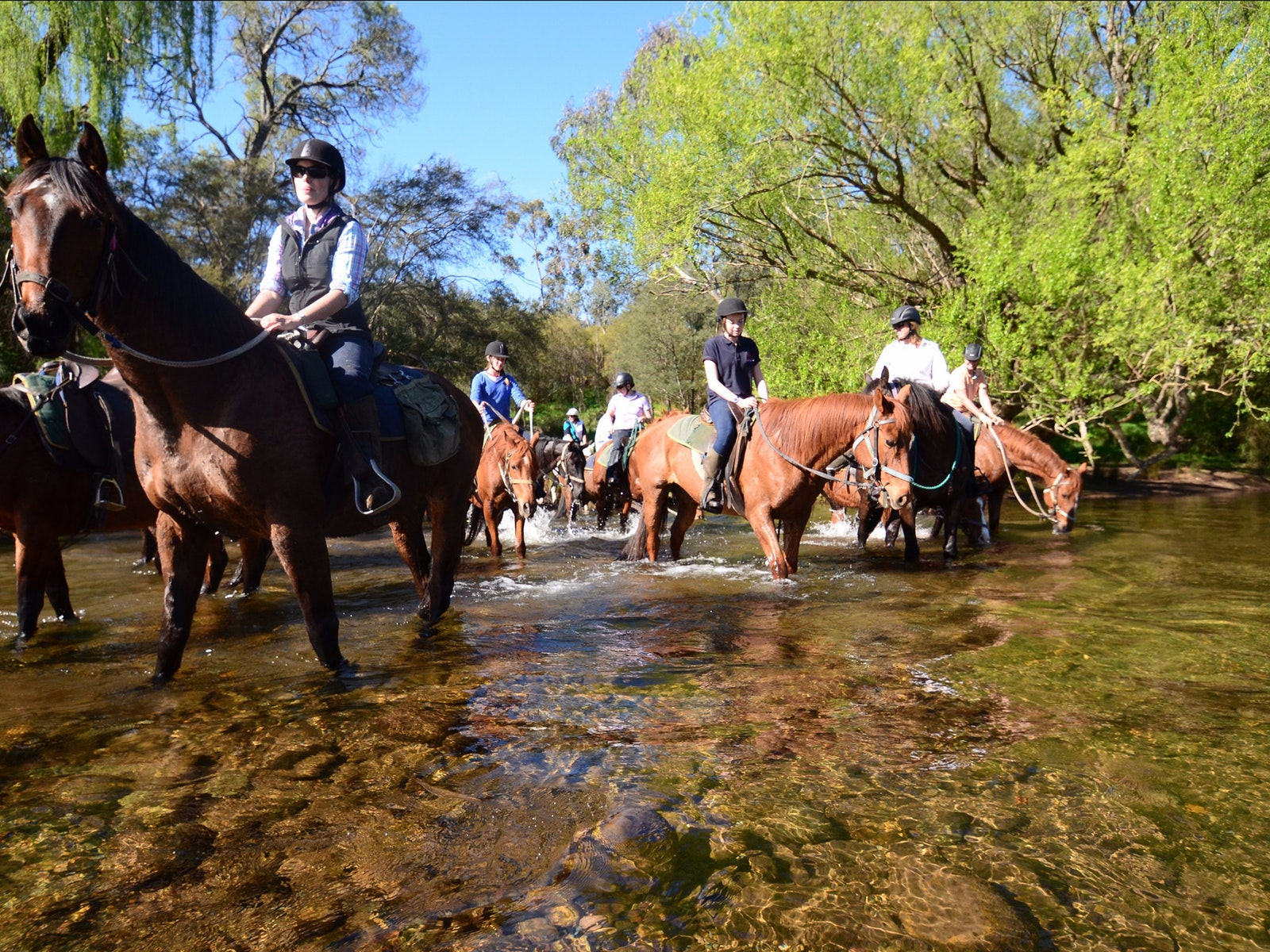 River crossing on two day horse ride