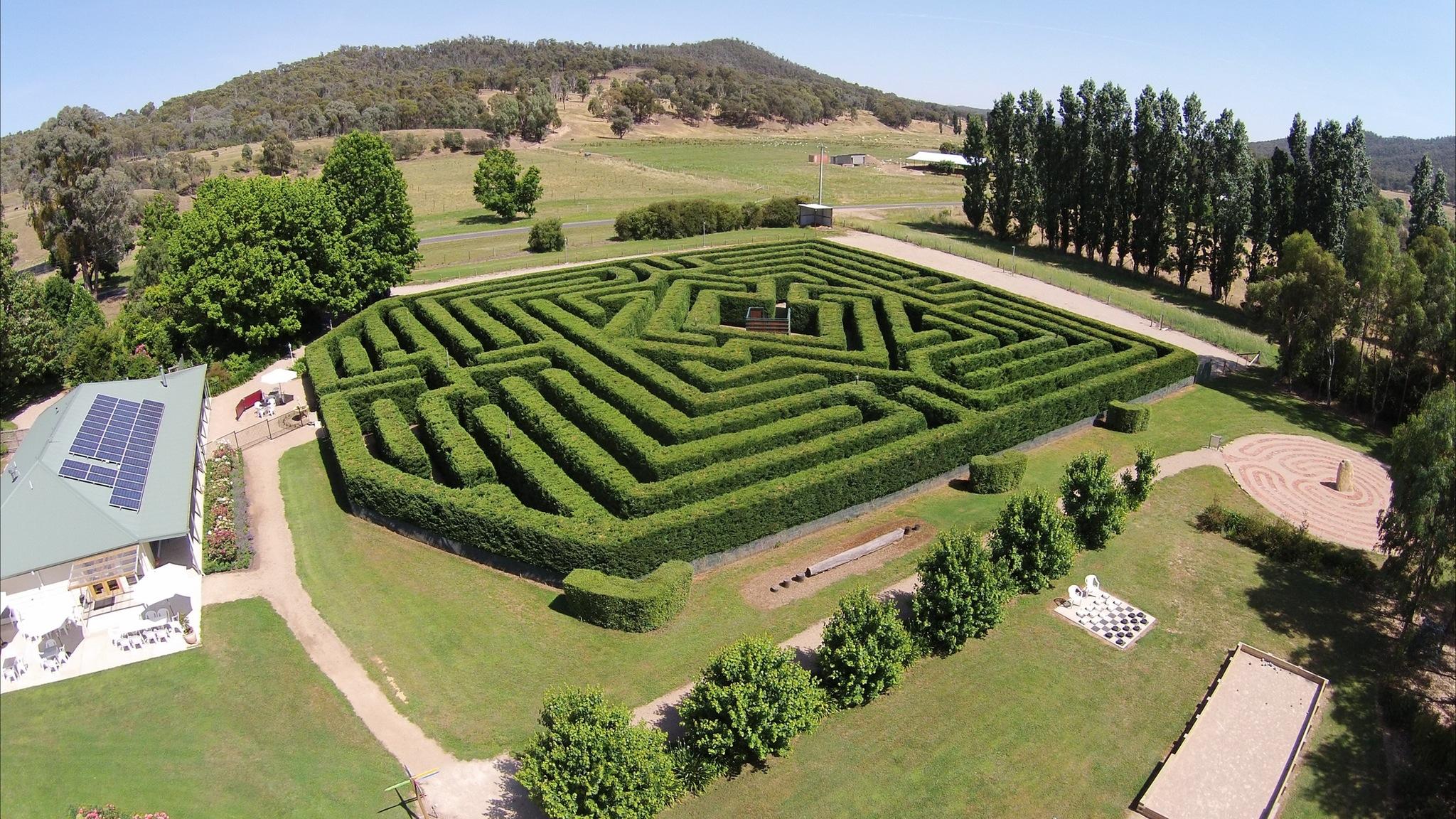 Airiel photo of maze