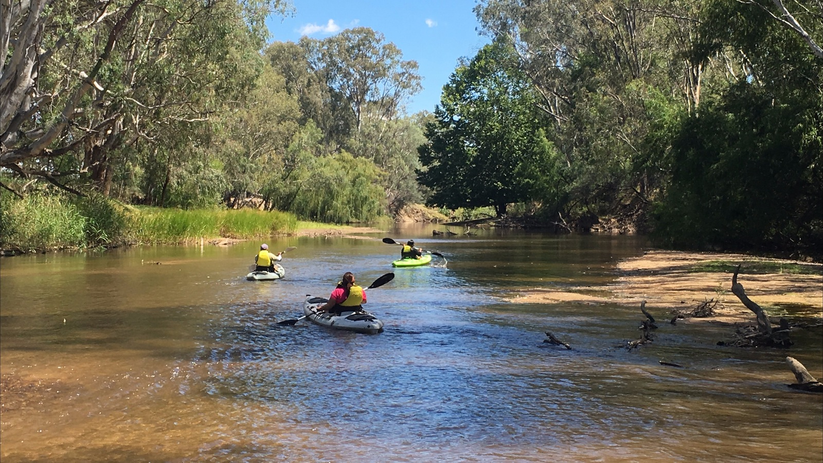 3 kayakers on the Ovens River