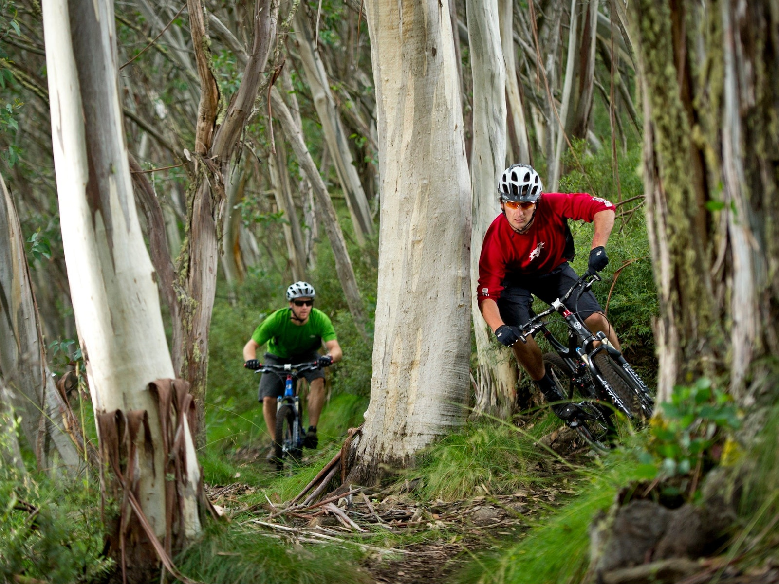 All Terrain Cycle Tours