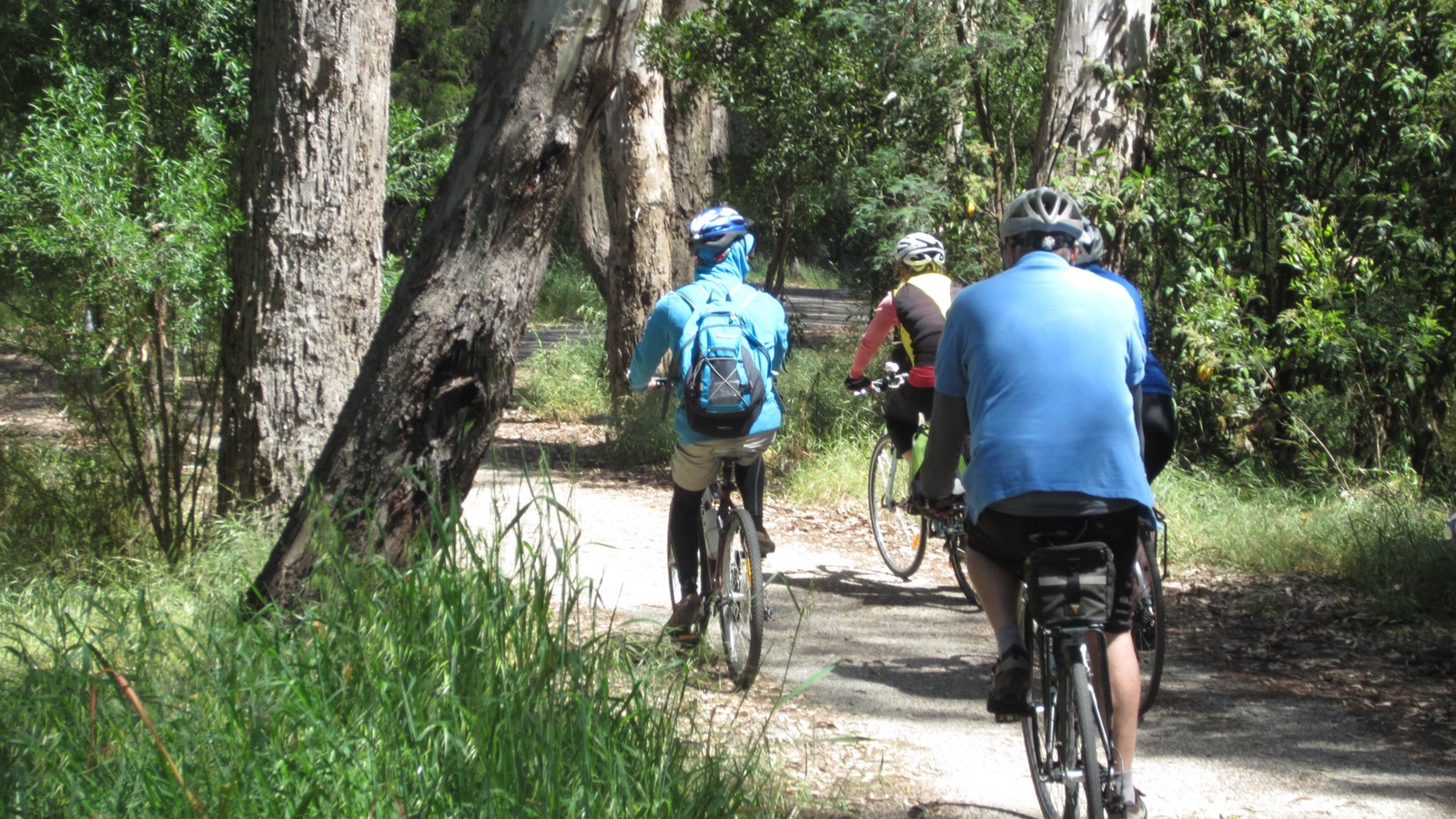 Take a hire bike along the Myrtleford Loop Trail along the Ovens River