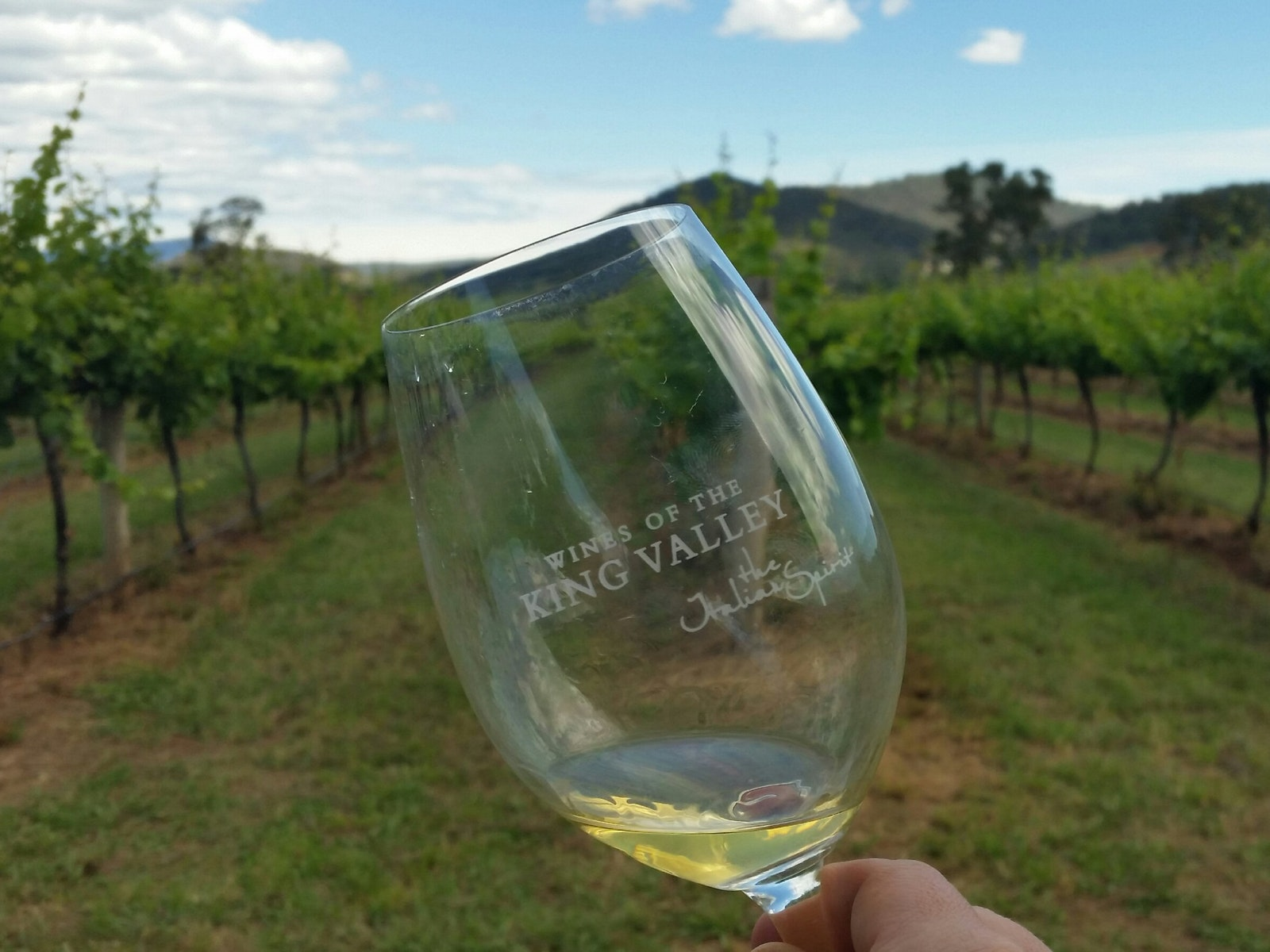Taste the variety of wines of offer at local cellar doors
