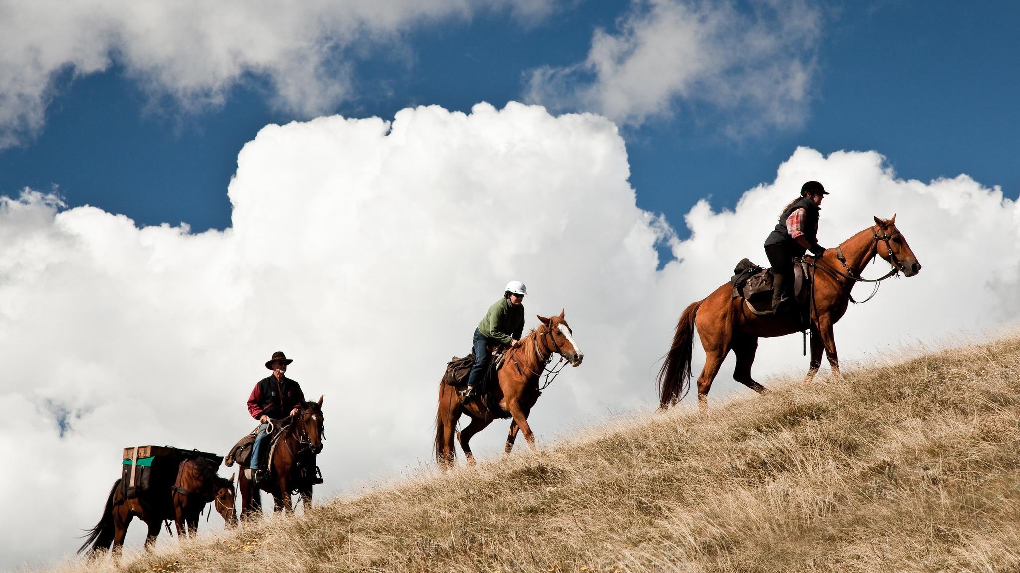 Pack Horses cross the plains