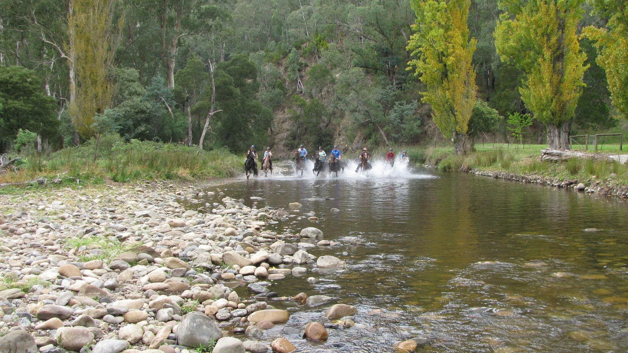 fun in the river at Sheepyard
