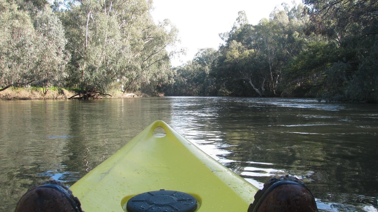 Ovens River Kayaking