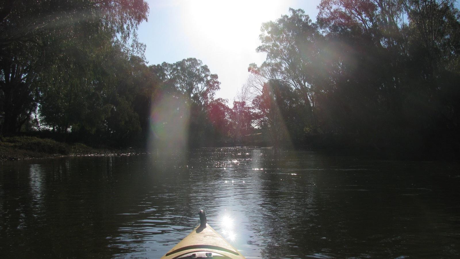 Sunrise Kayaking on the Ovens River