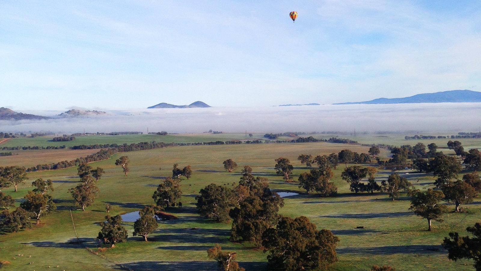 Ballooning in Mansfield