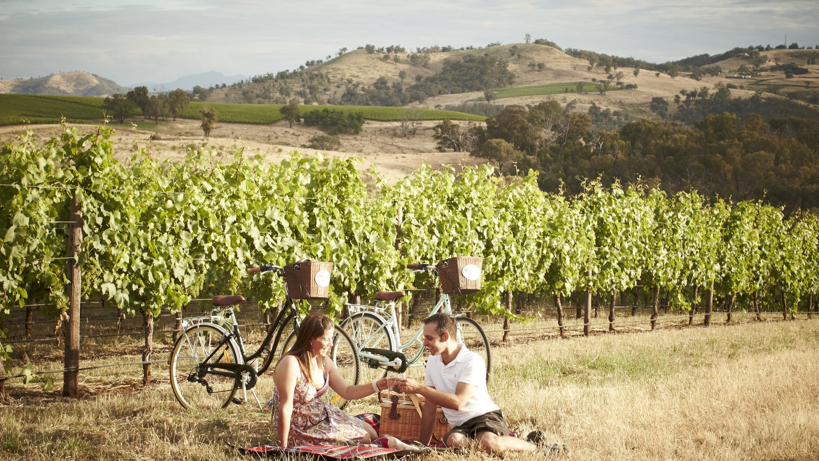 picnicking in vineyard -pedal to produce