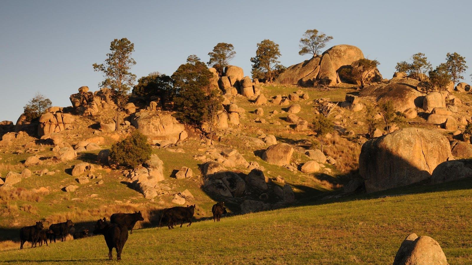Strathbogie Ranges