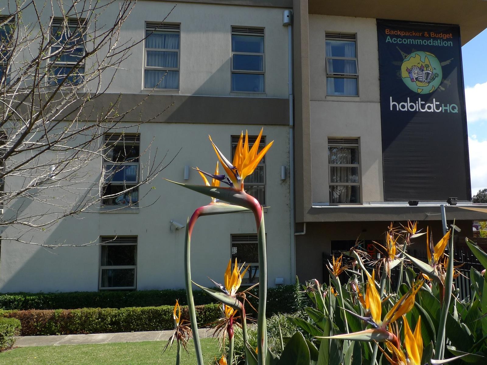 Habitat HQ exterior