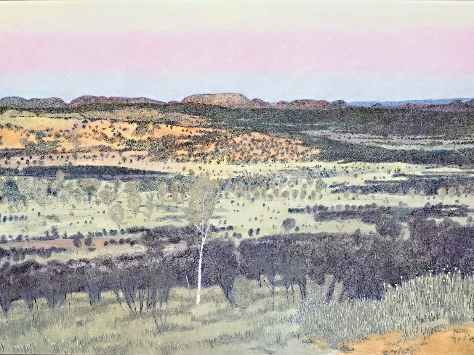 Geoffrey Falk, MacDonnell Ranges, 2016, Indian ink and oil on canvas, 168cm x 102cm