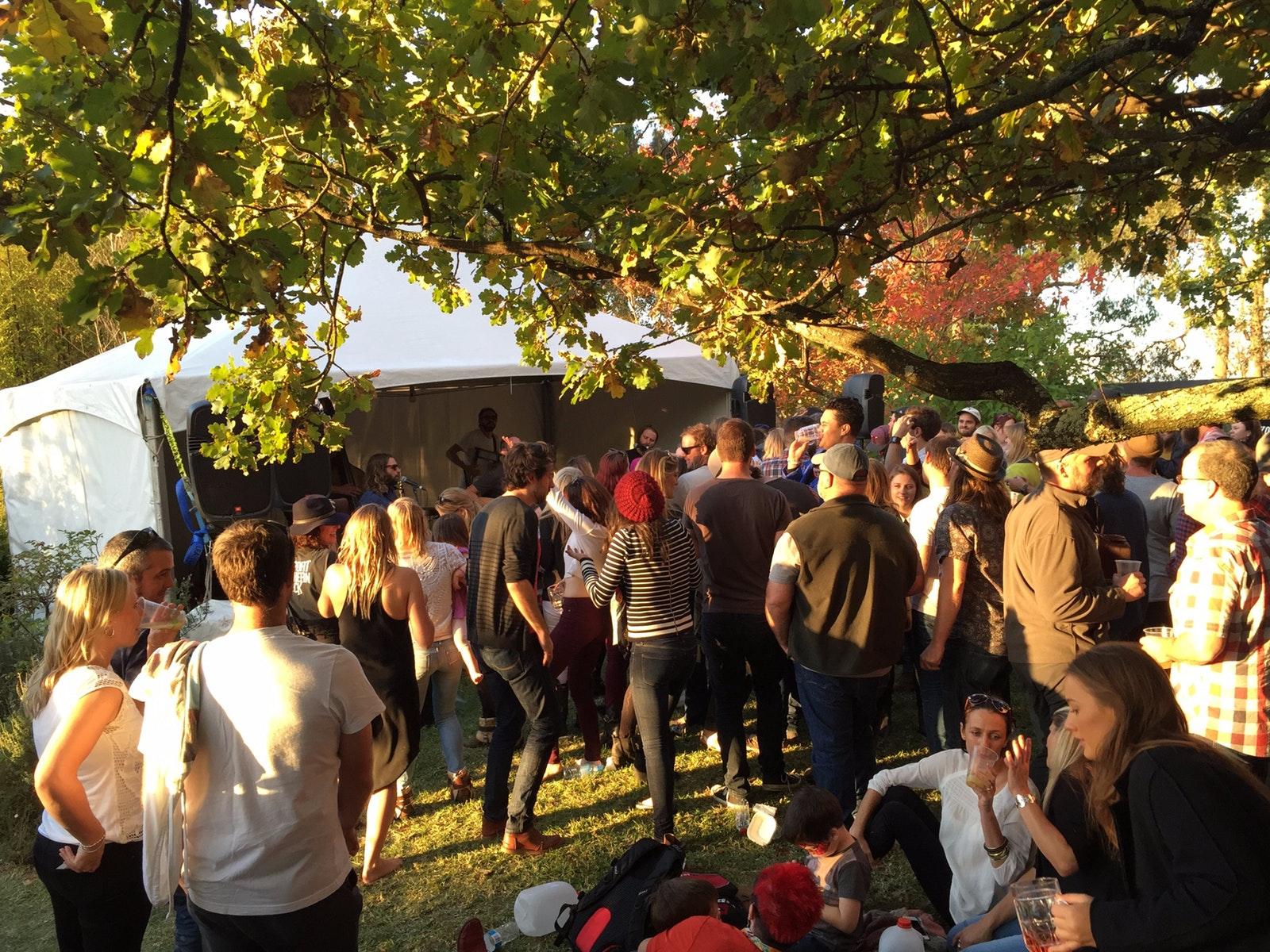 Live music at Kellybrook Cider Festival