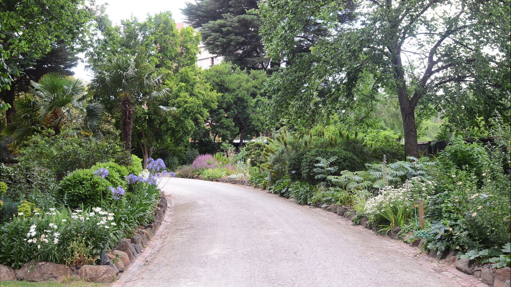 "alt=""sweeping path surrounded by mature garden borders"""