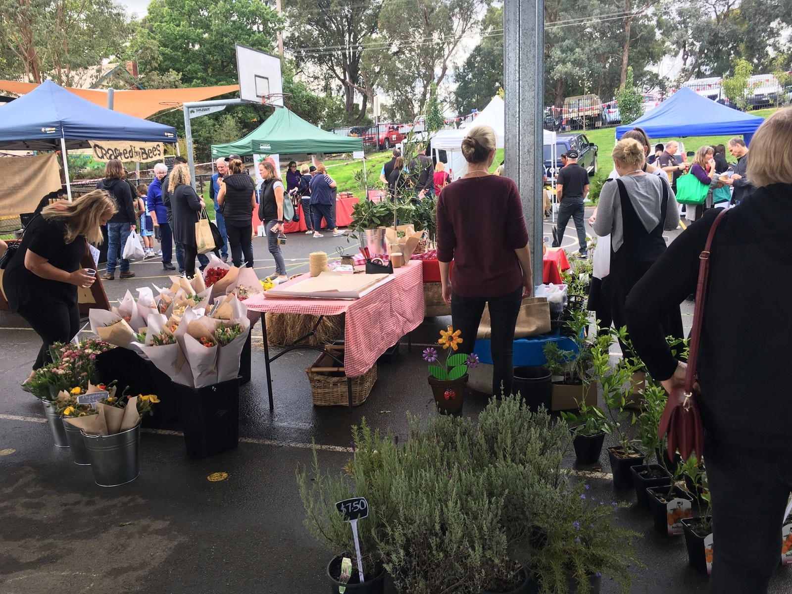 April market - WPPS flowers, garden produce, plants