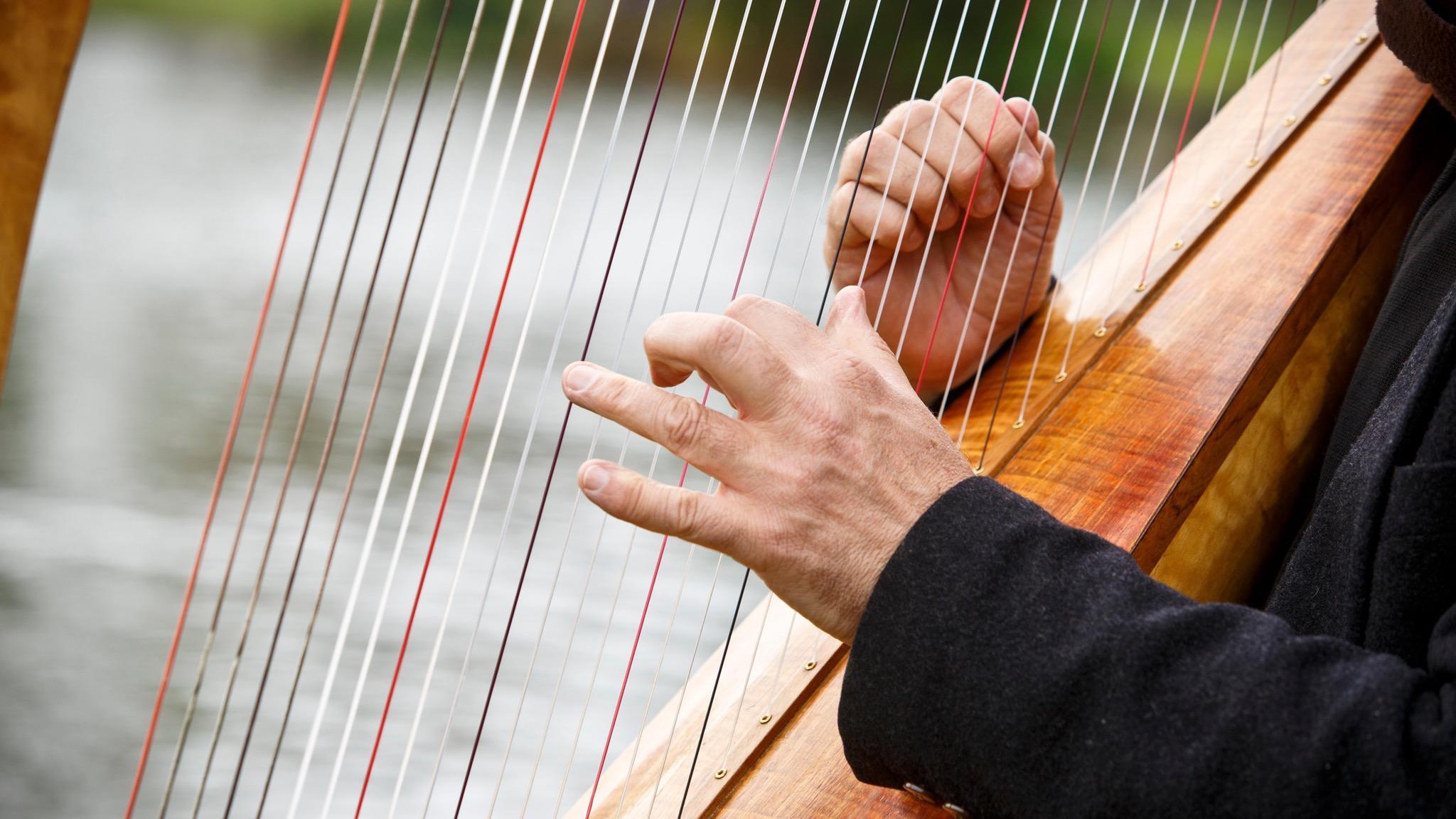 Michael Johnson playing the harp