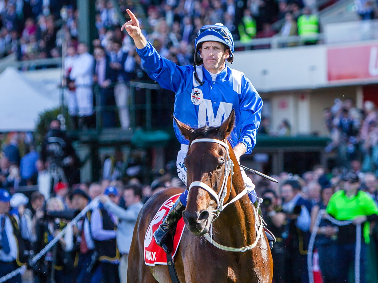 Winx - Winner of the 2017 Ladbrokes Cox Plate