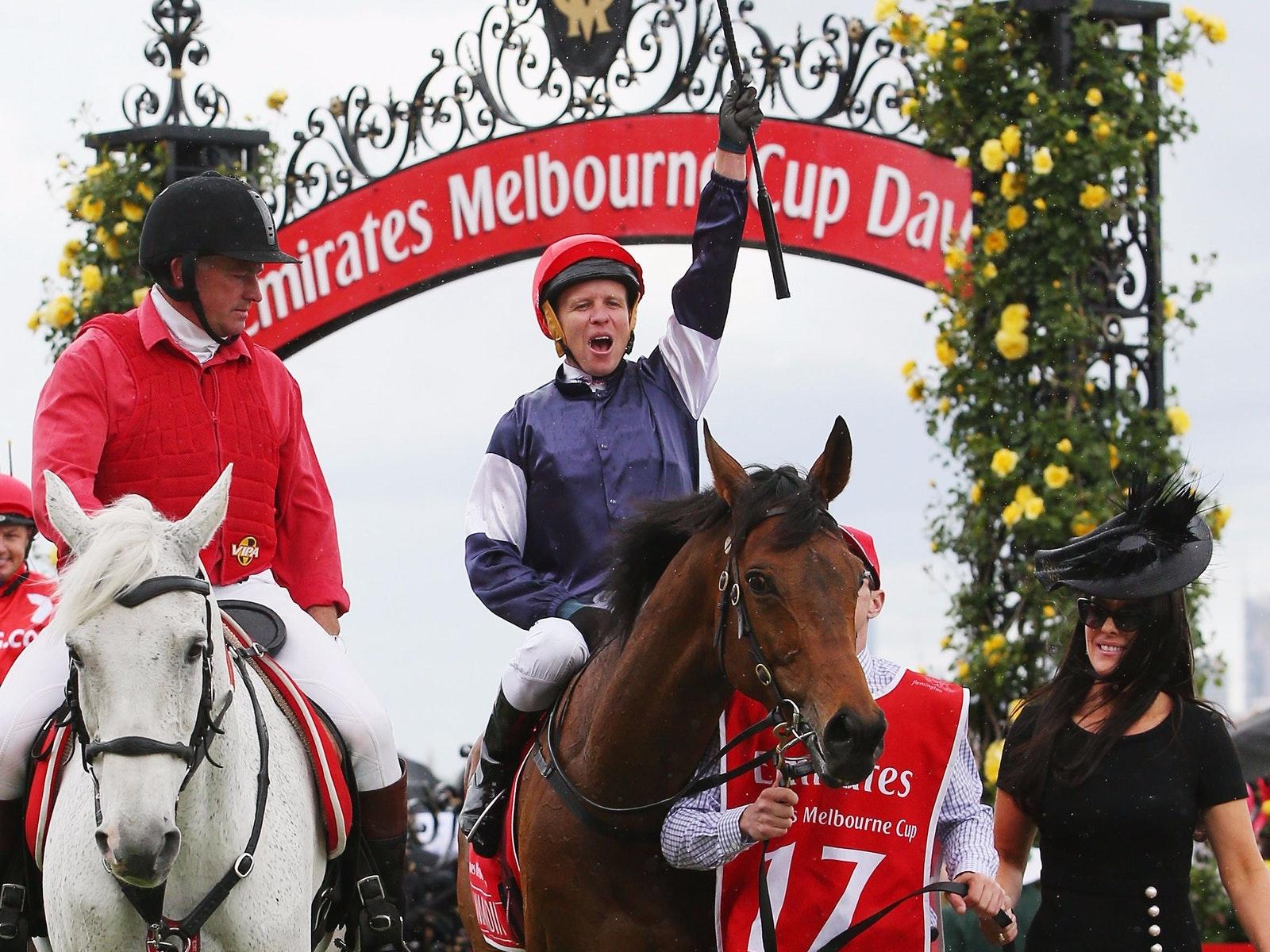 2016 Emirates Melbourne Cup winner, Almandin