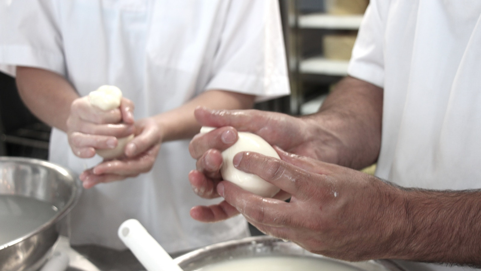 Cheese making facility & workshops