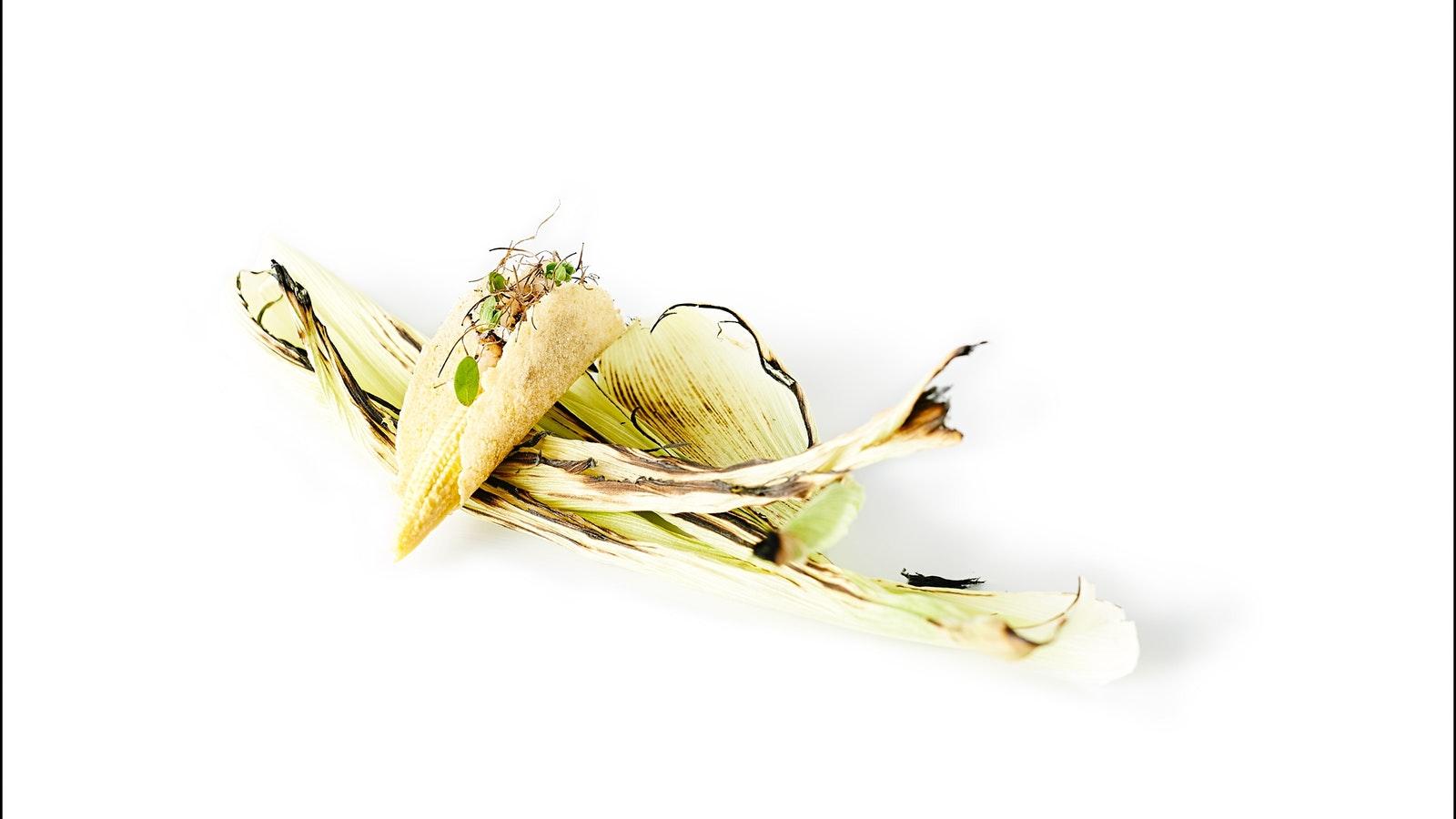Sea corn taco Lume restaurant