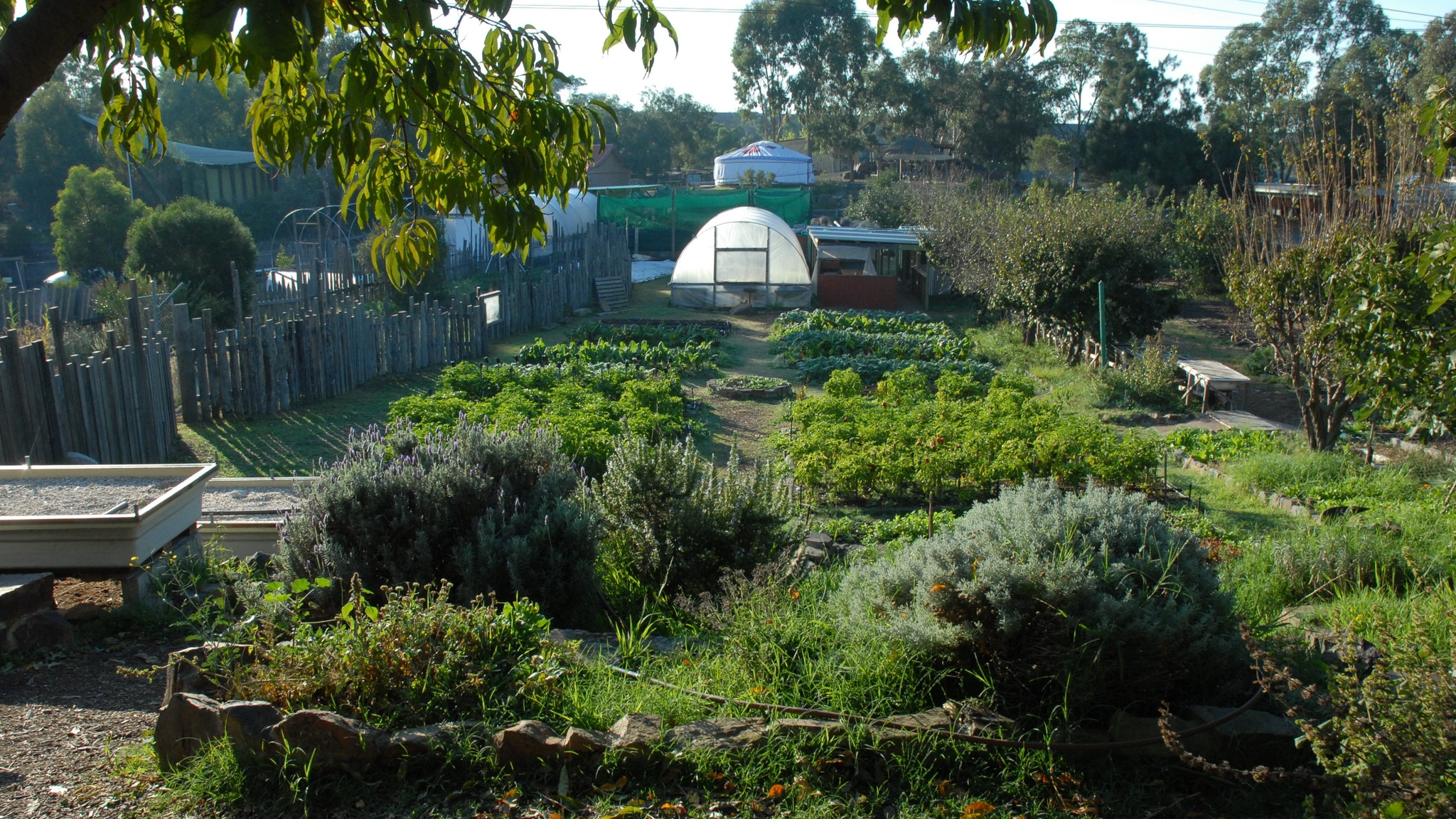 Honey Lane Market Garden