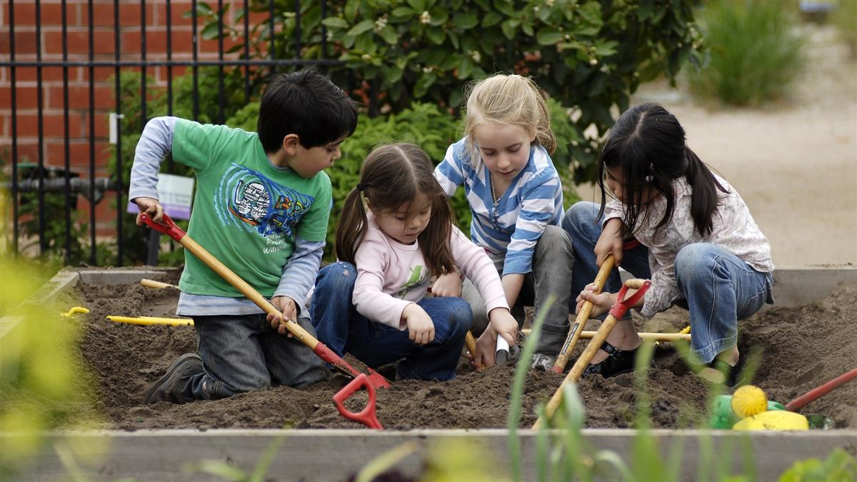 The Ian Potter Foundation Childrens Garden Attraction Melbourne