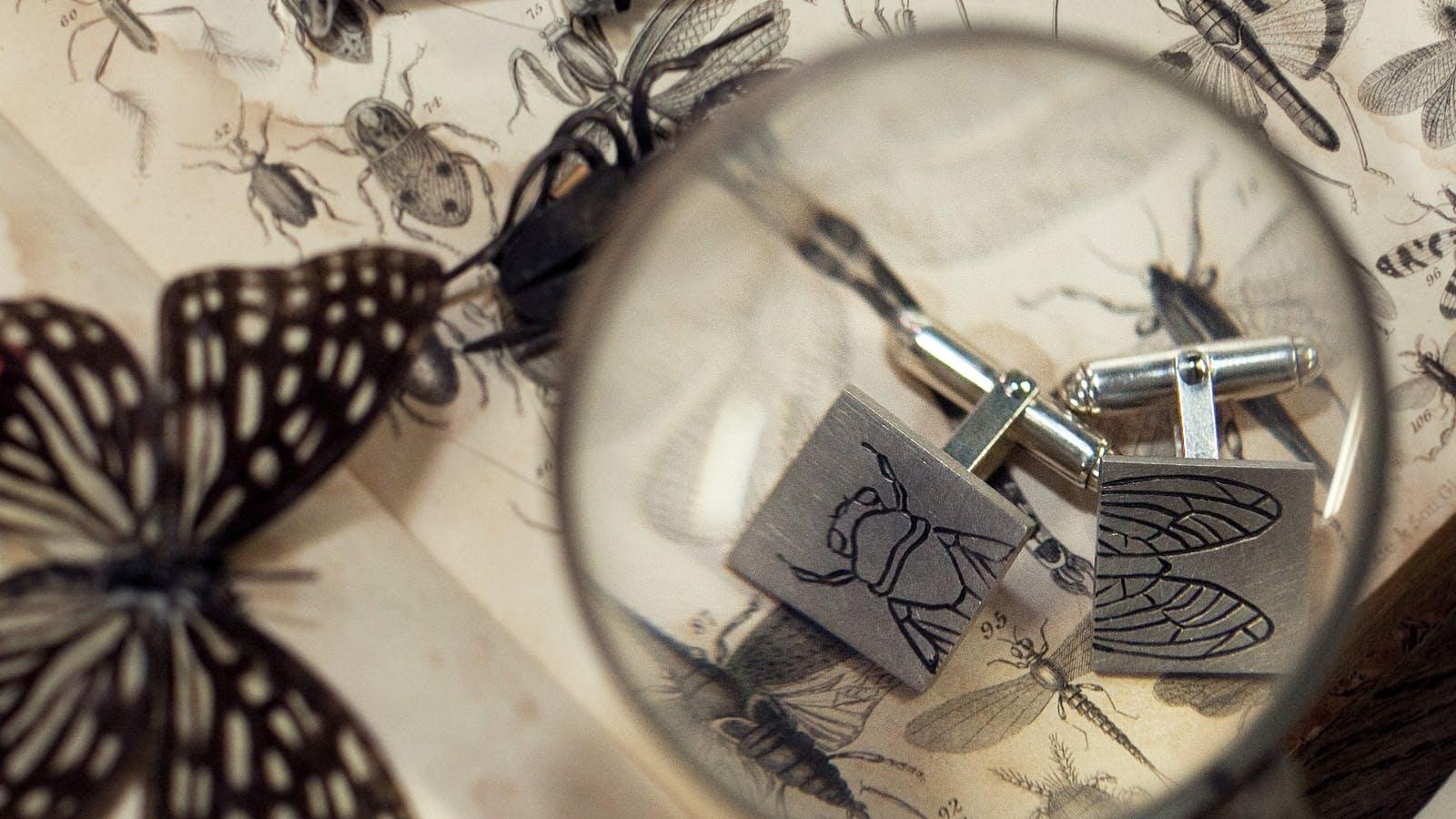 Cicada cufflinks by Katzinka Tschierschky
