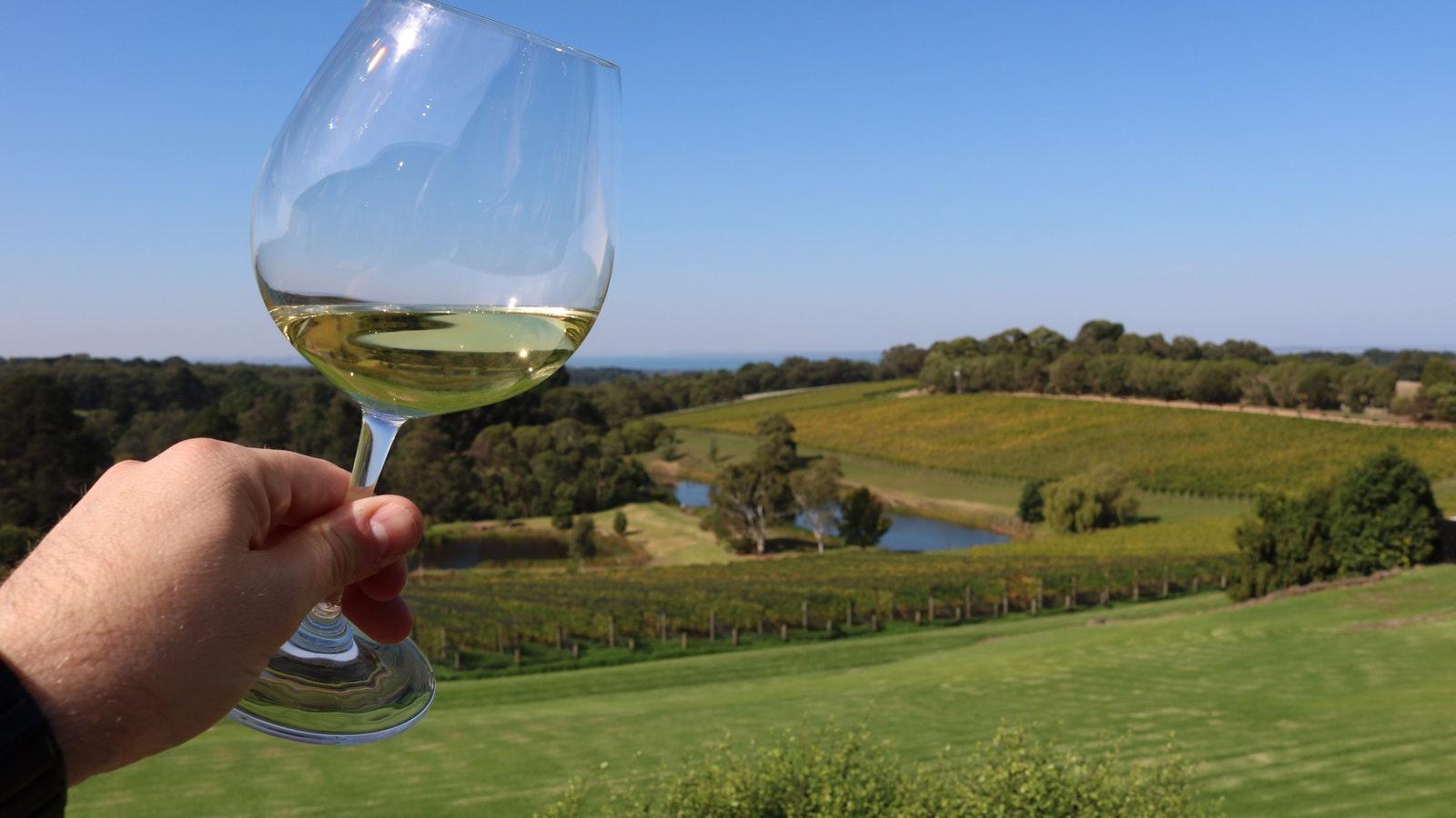 Wine Tasting Mornington Peninsula