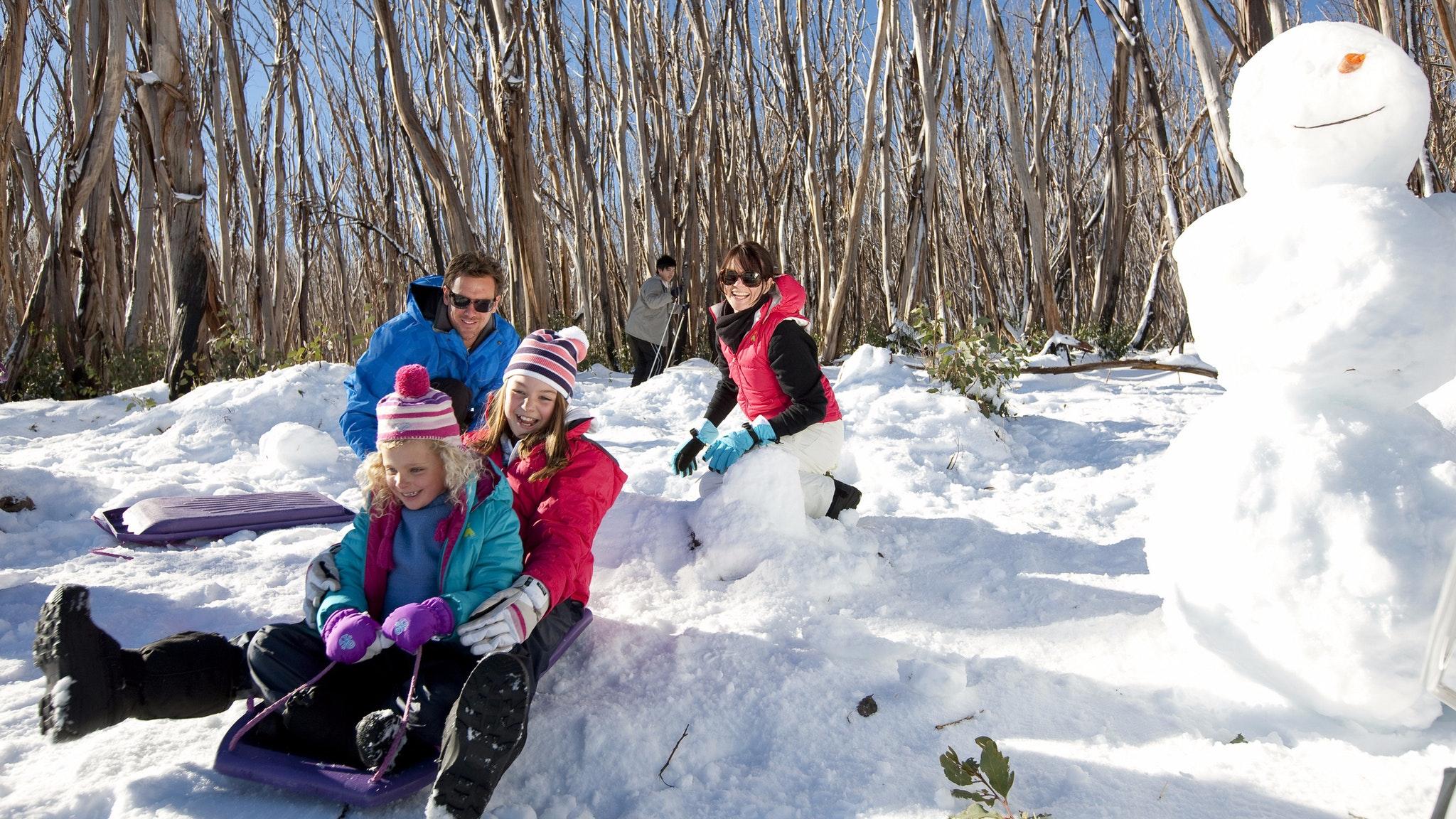 Lake Mountain Snow Private Tour