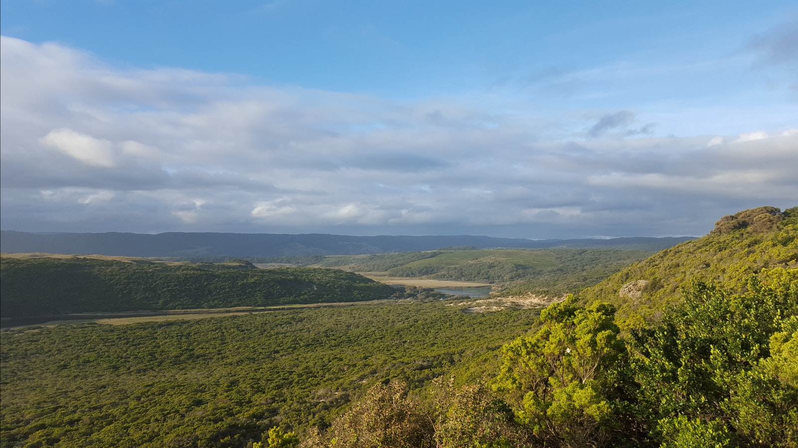 View over Aire River - Great Ocean Walk
