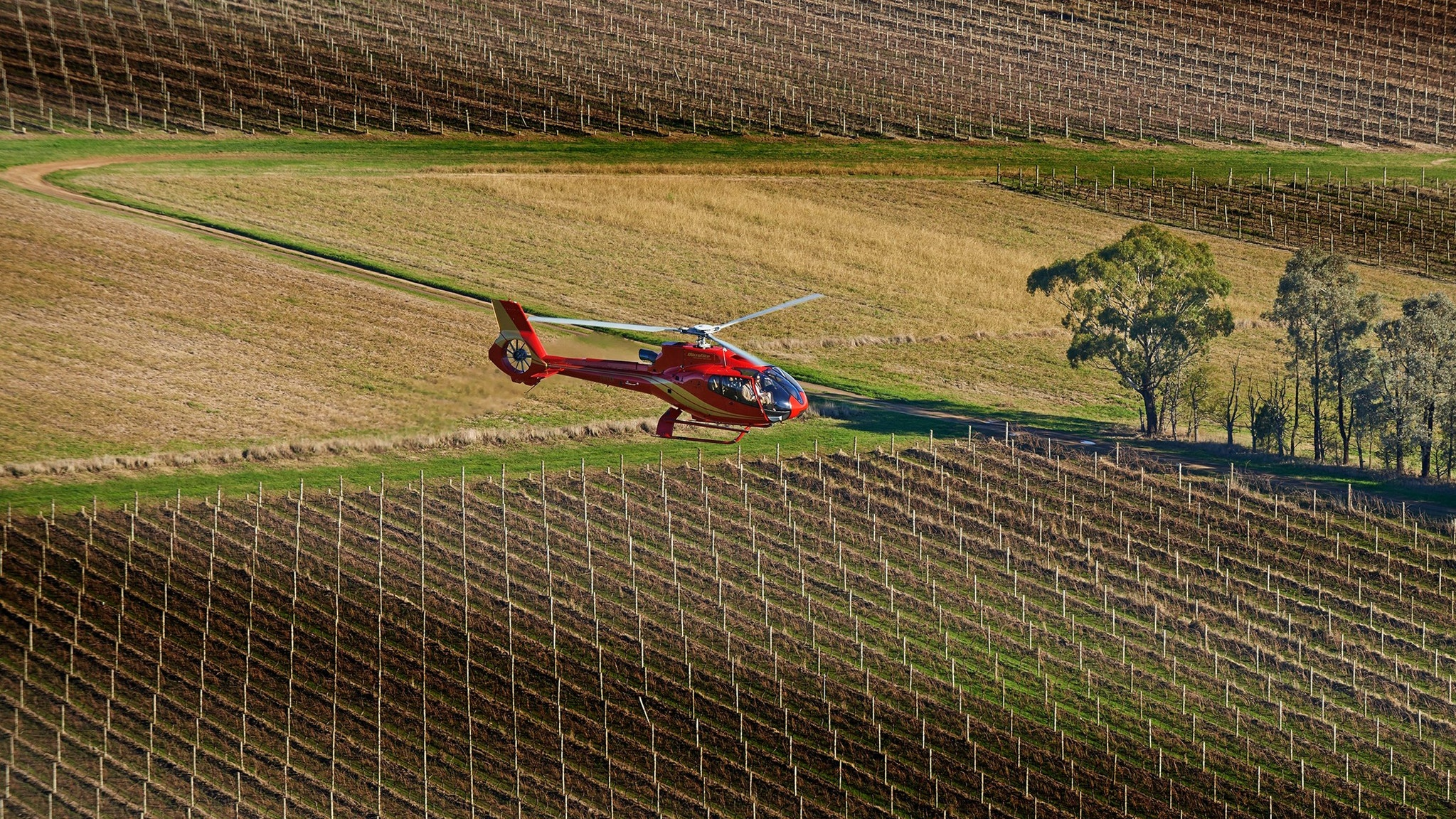 Yarra Valley Helicopter Luxury Private Tour Winery