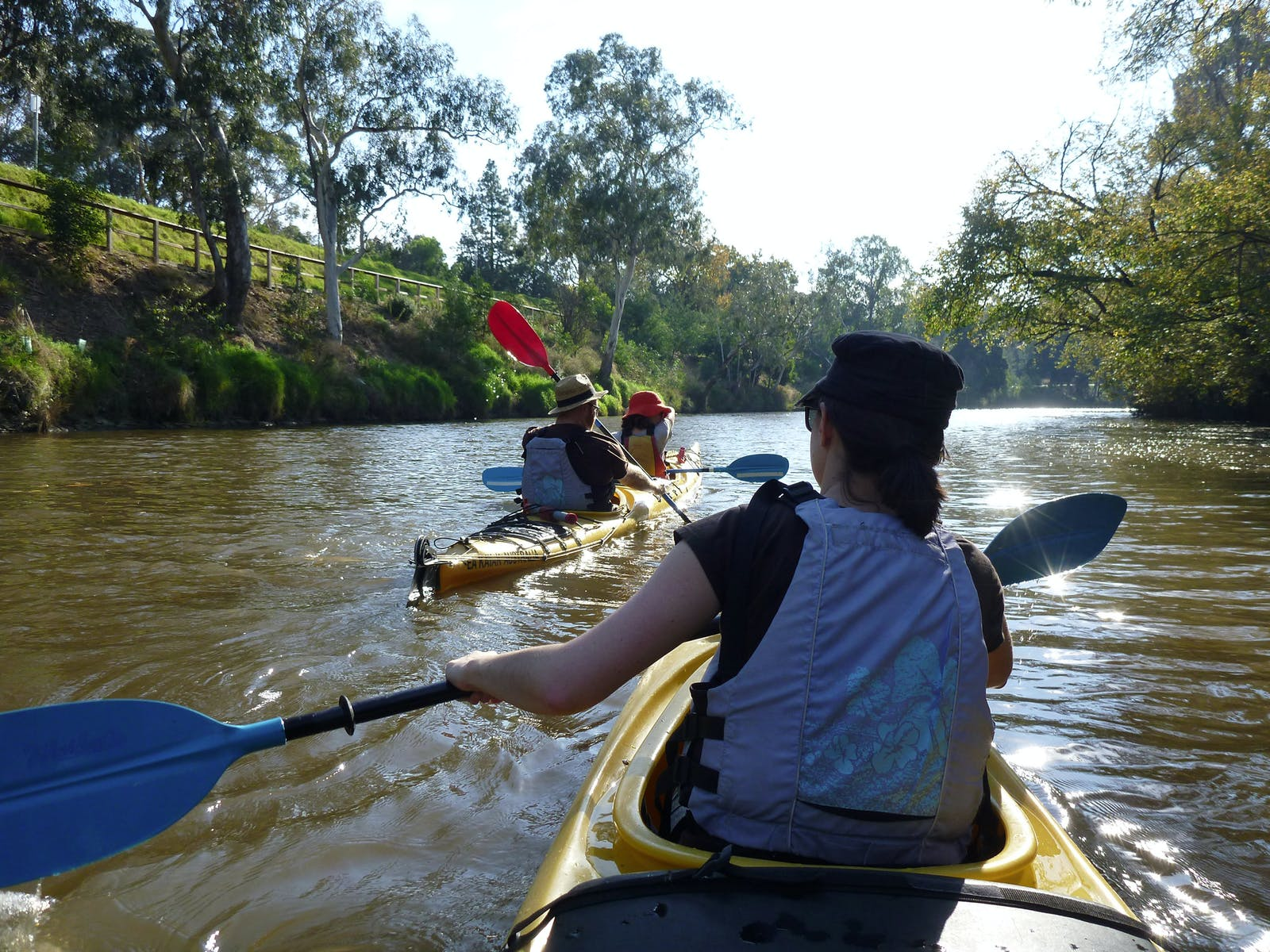 Kayak Hire on the Yarra River in Abbotsford, Melbourne