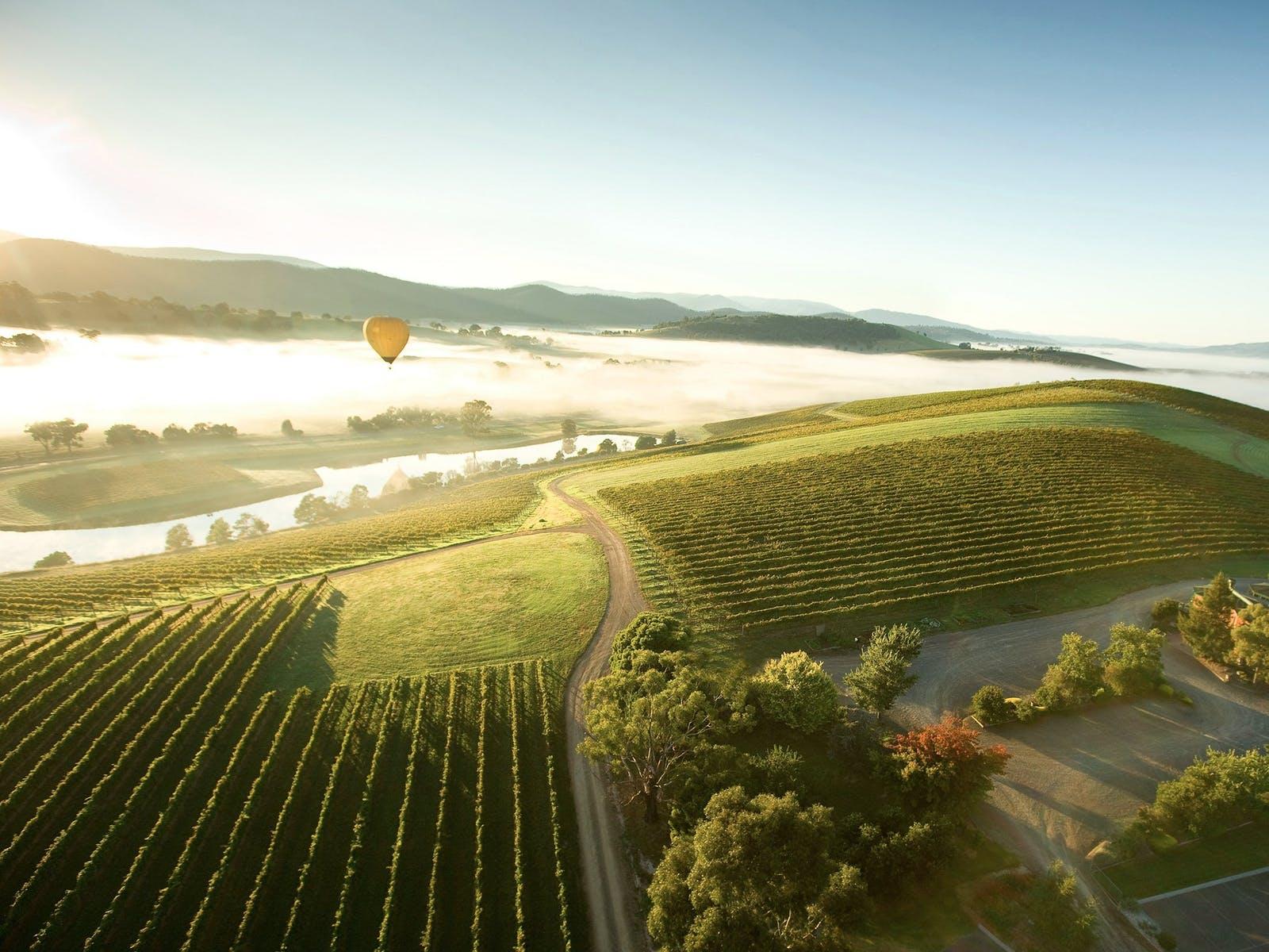 Hot Balloon over Yarra Valley Region