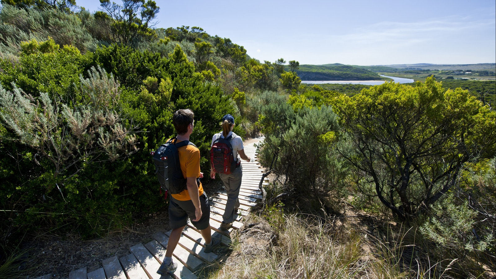 Take a stroll on the Great Otway National Park Trails, Great Ocean Road Tour